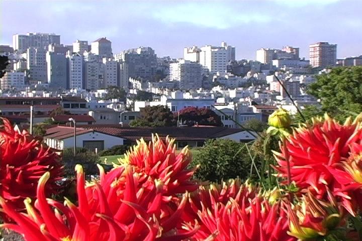 San Francisco from Fort Mason