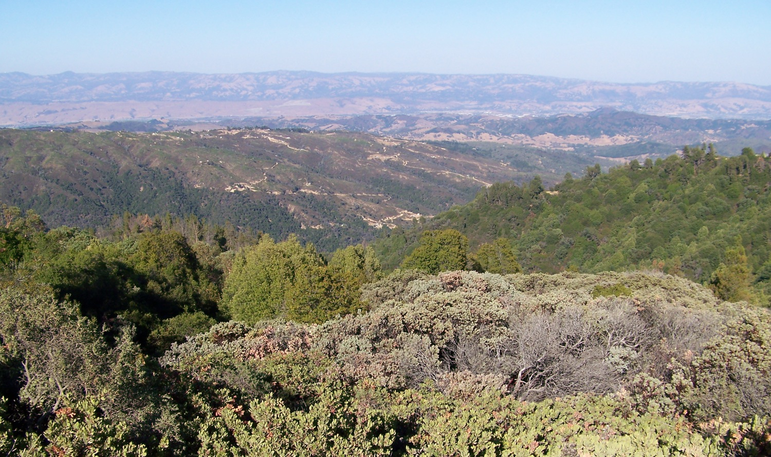 View of Gilroy area from near top of Loma Prieta