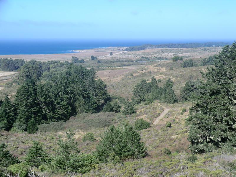 Marine terraces near Franklin Point