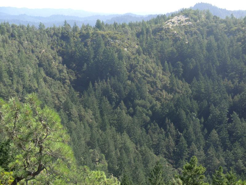 Westward-trending ridges from Chalks Mountain