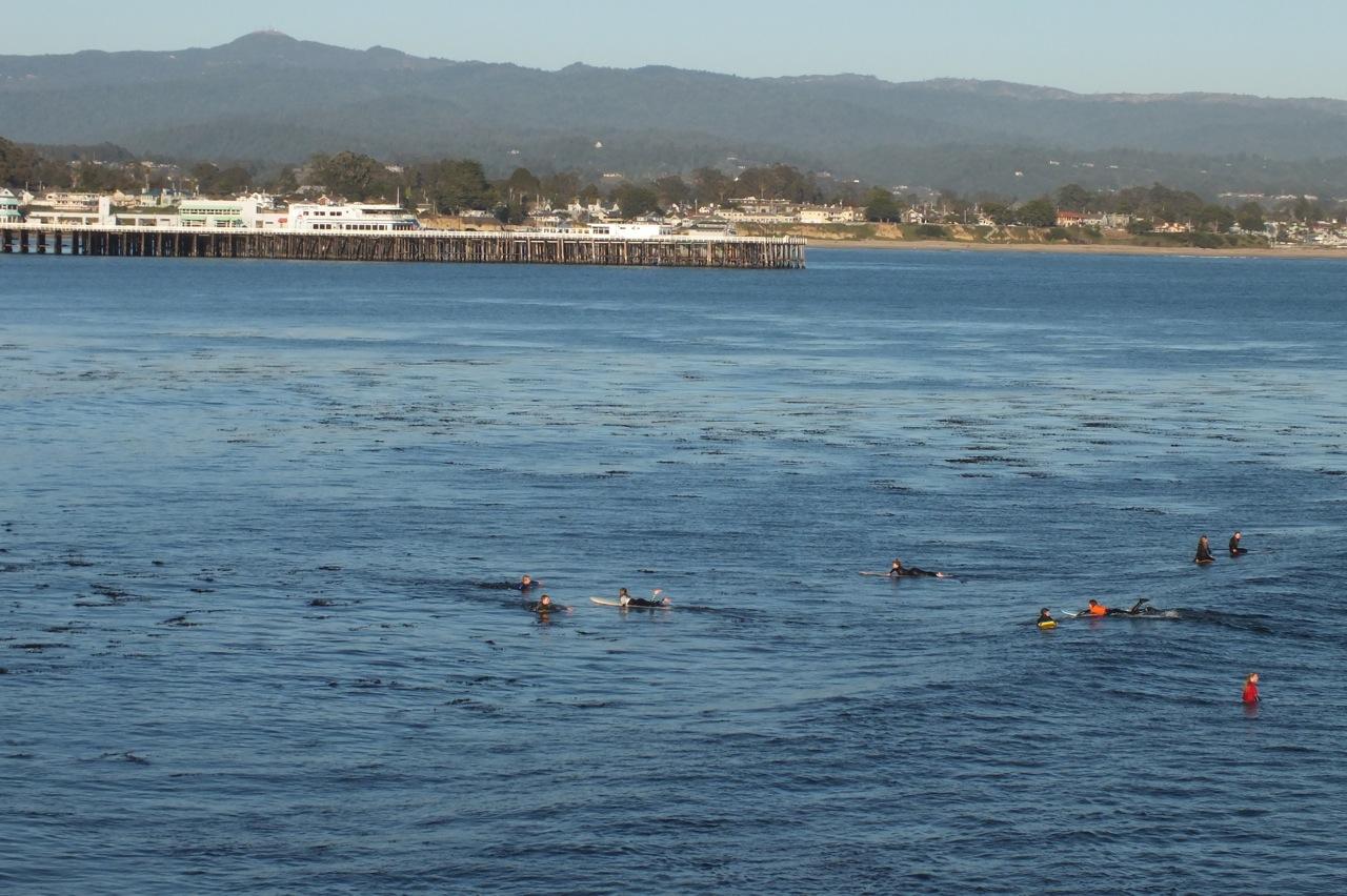 Views of Santa Cruz wharf with Loma Prieta in background from West Cliff Drive, Santa Cruz
