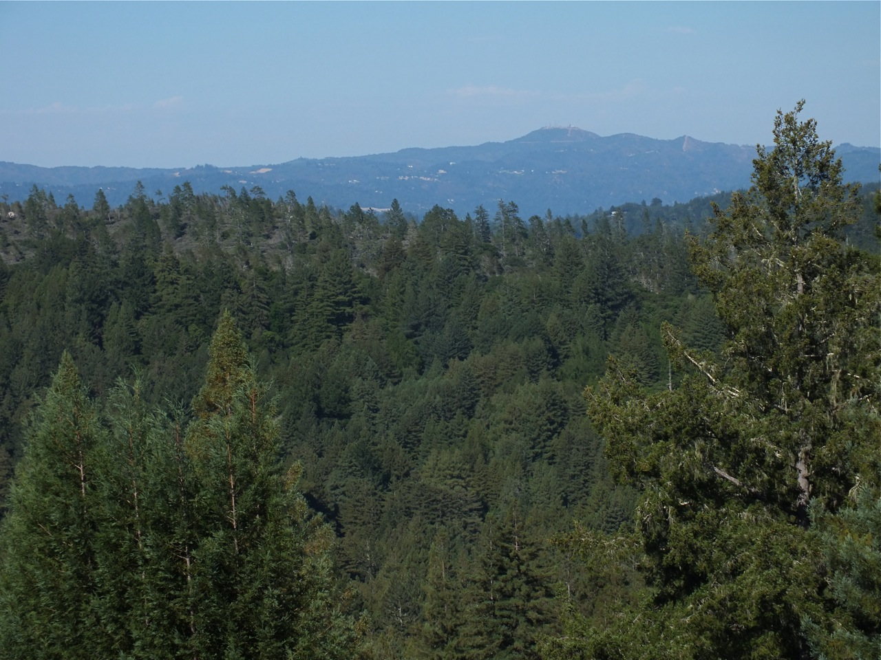 Loma Prieta, Roaring Camp Bear Mtn. in foreground from Ben Lomond Mountains