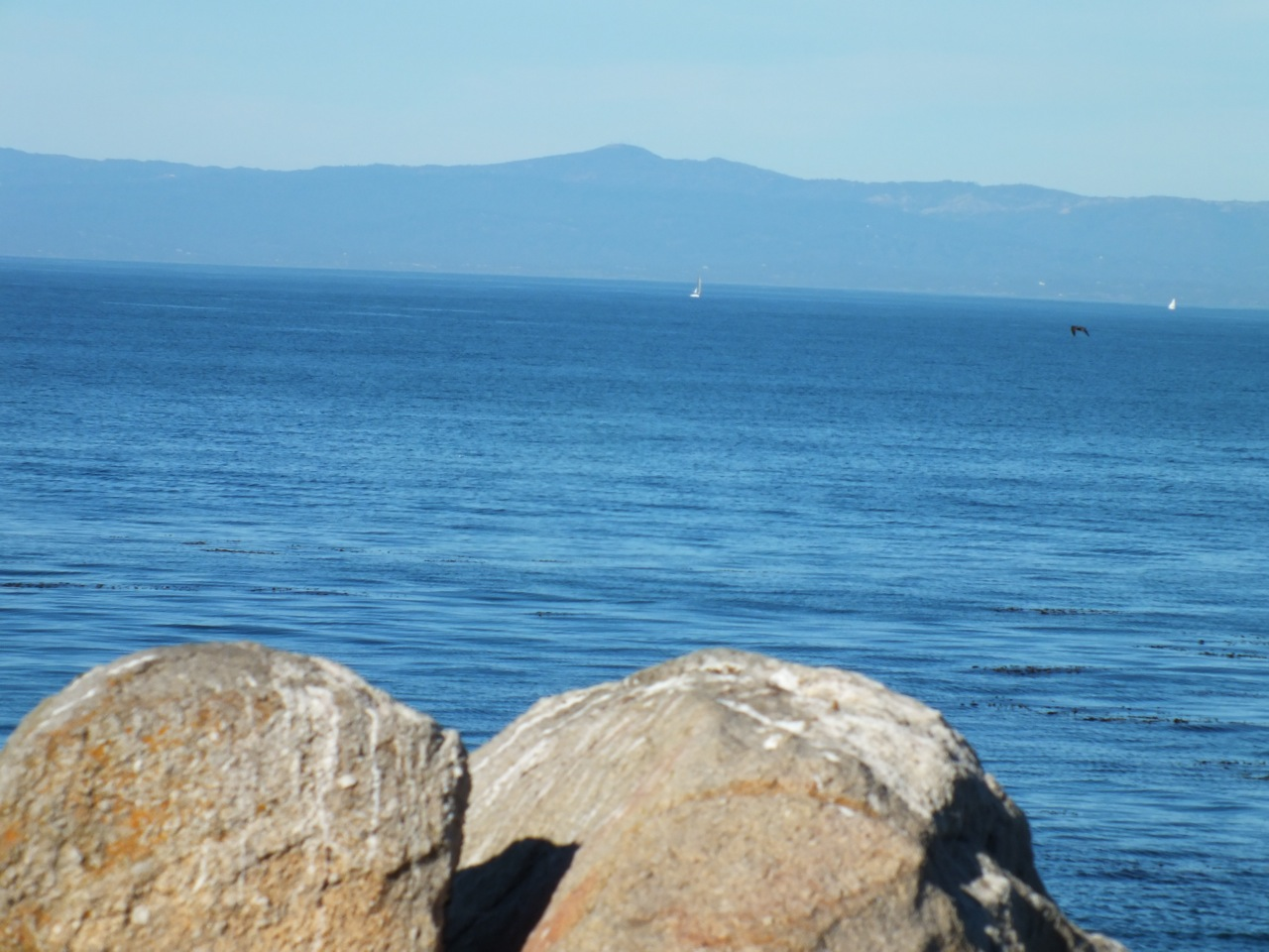 Granitic outcropping at Pacific Grove with Loma Prieta in the distance.