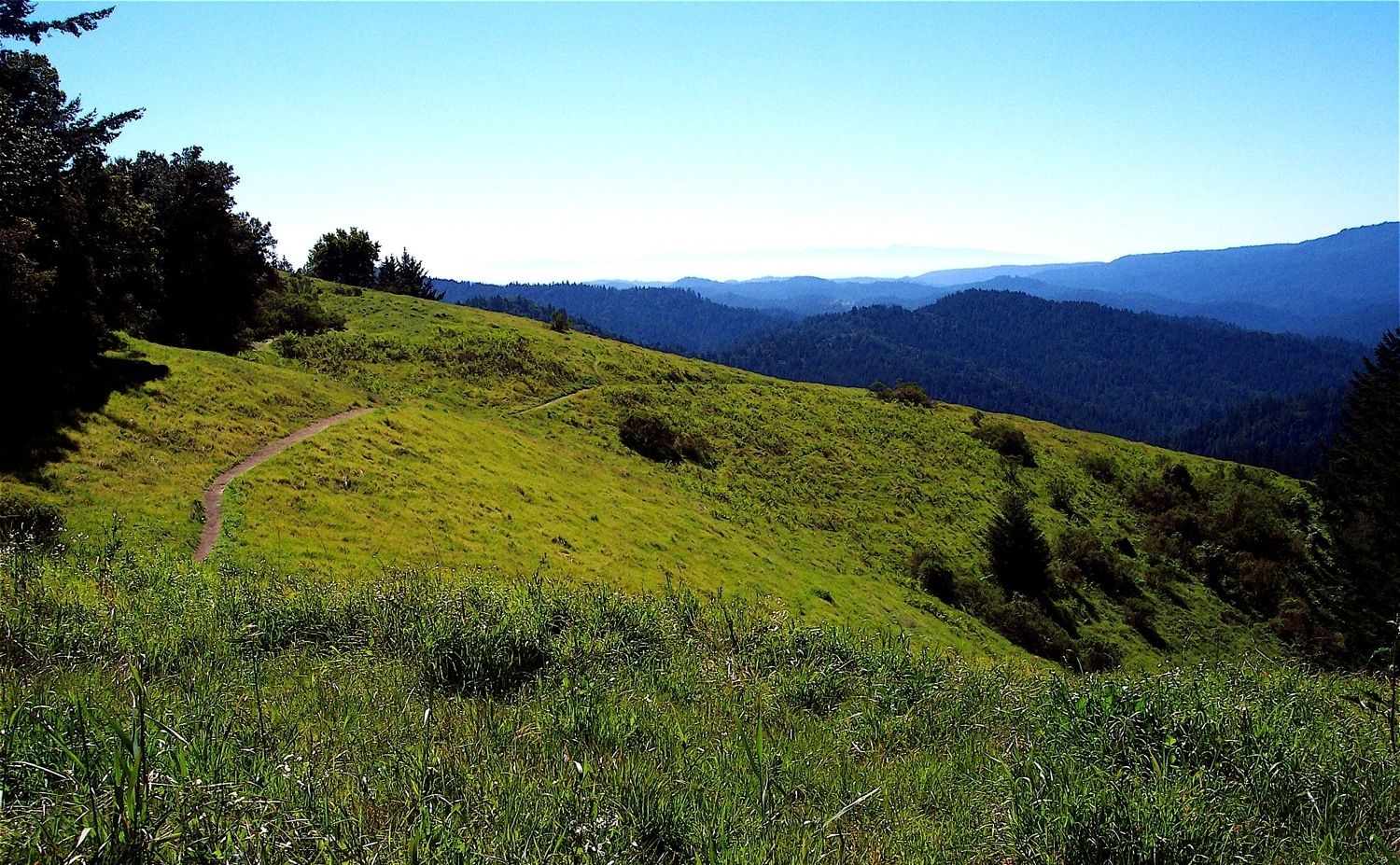 View of San Lorenzo Valley from Sempervirens Point