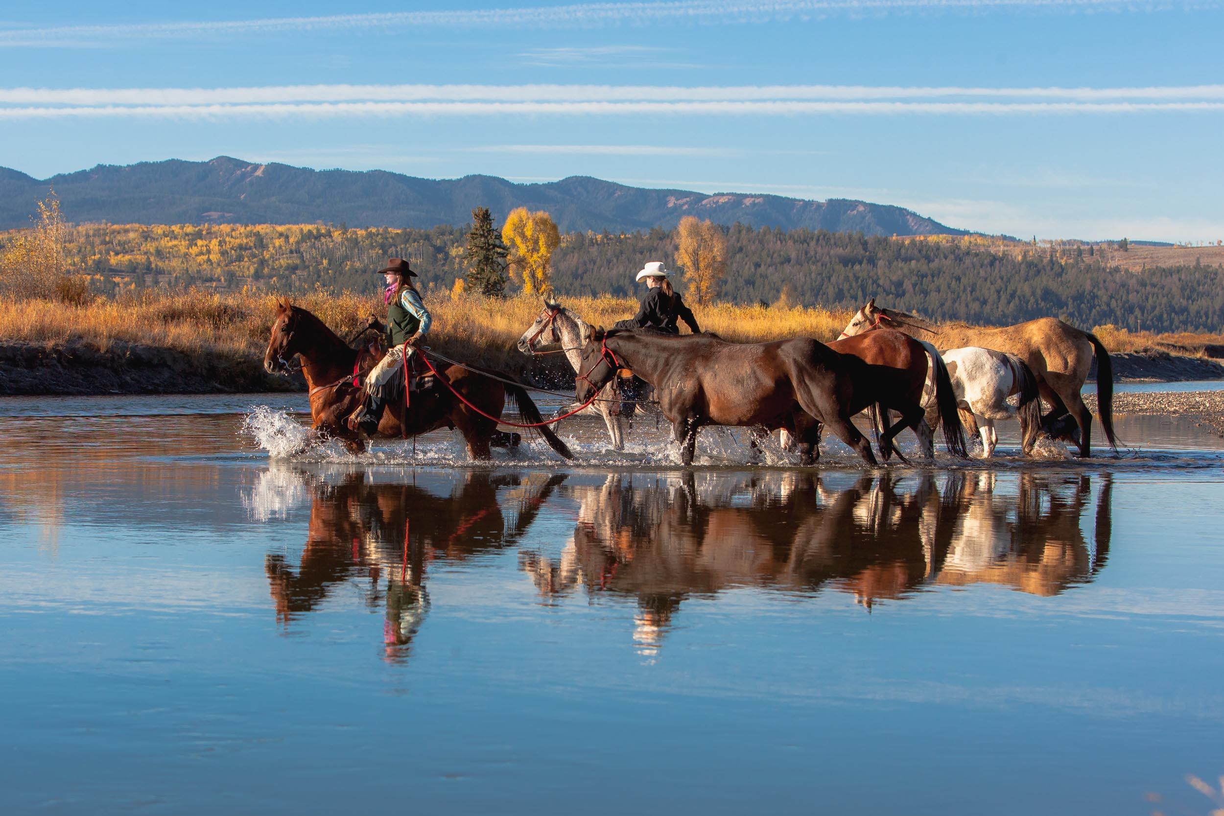 Jackson Hole, Wyoming 1.jpg