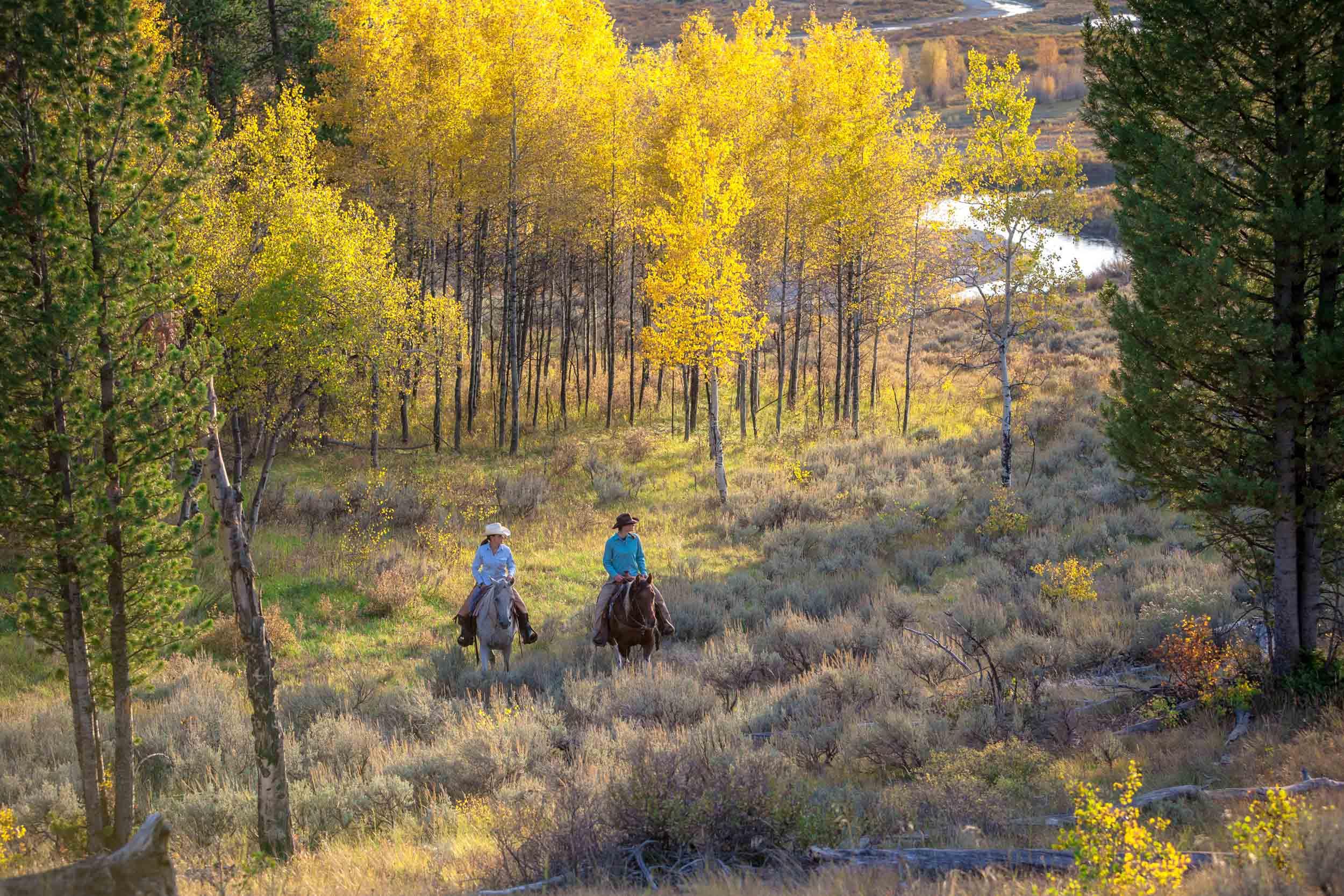 Jackson Hole, Wyoming 7.jpg