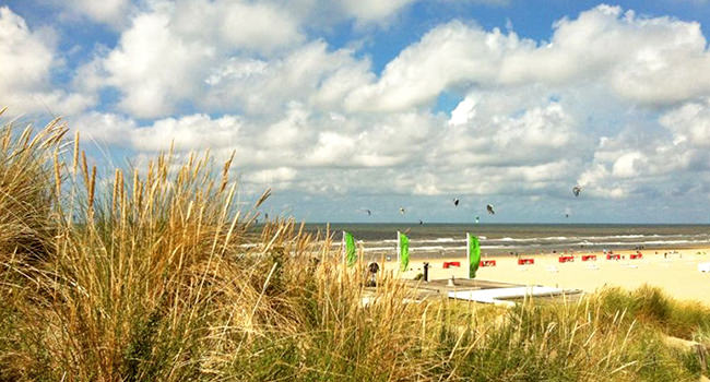 roland-beach.jpg