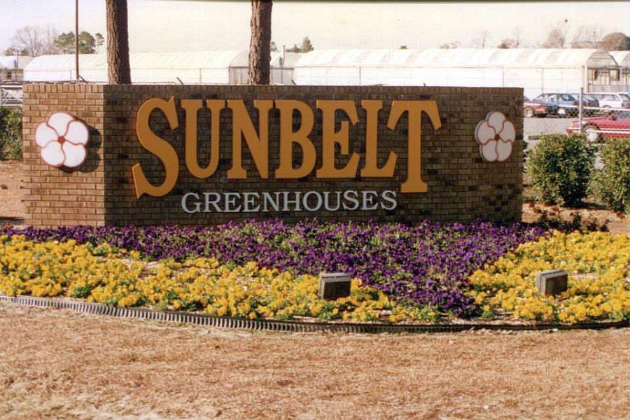 sunbelt-vintage-18.jpg
