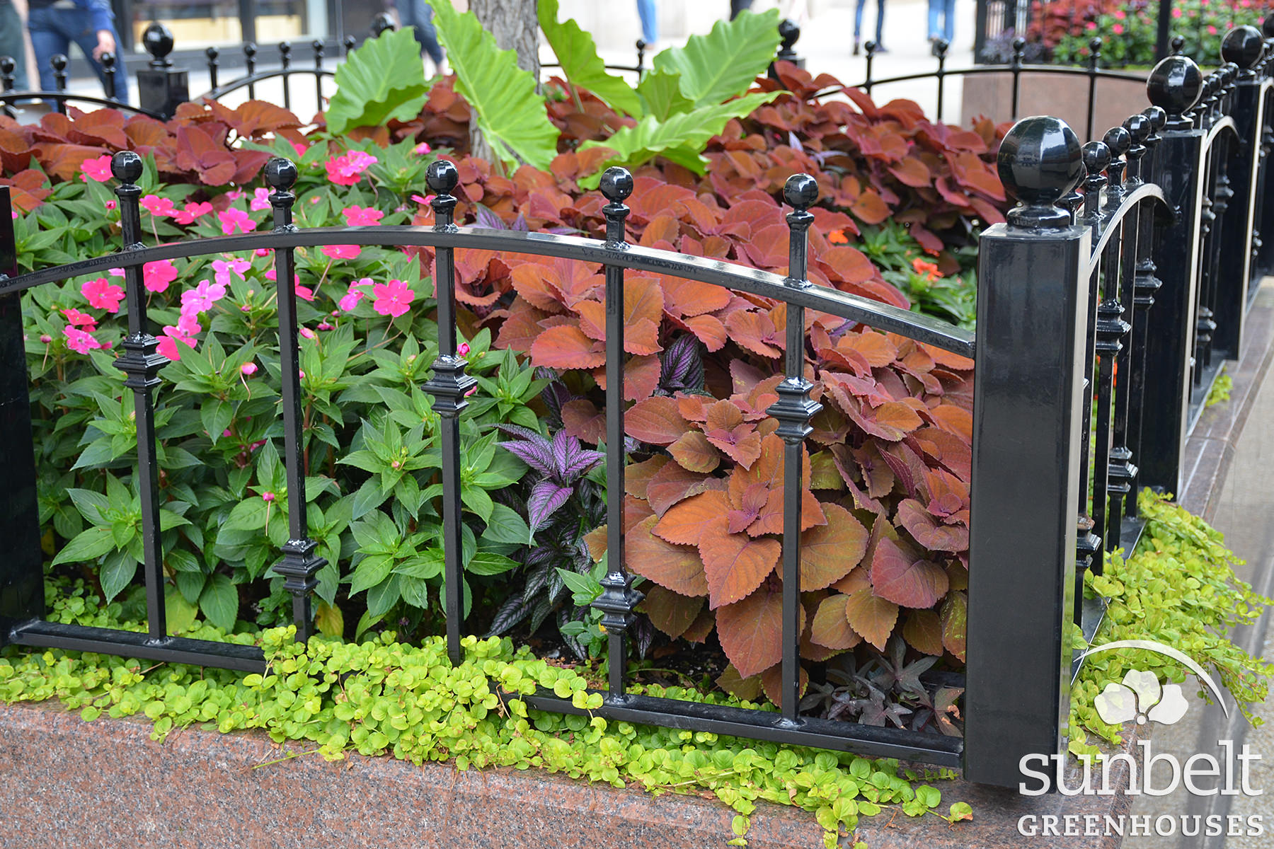 2015-08-19-chicago-landscaping-01.jpg