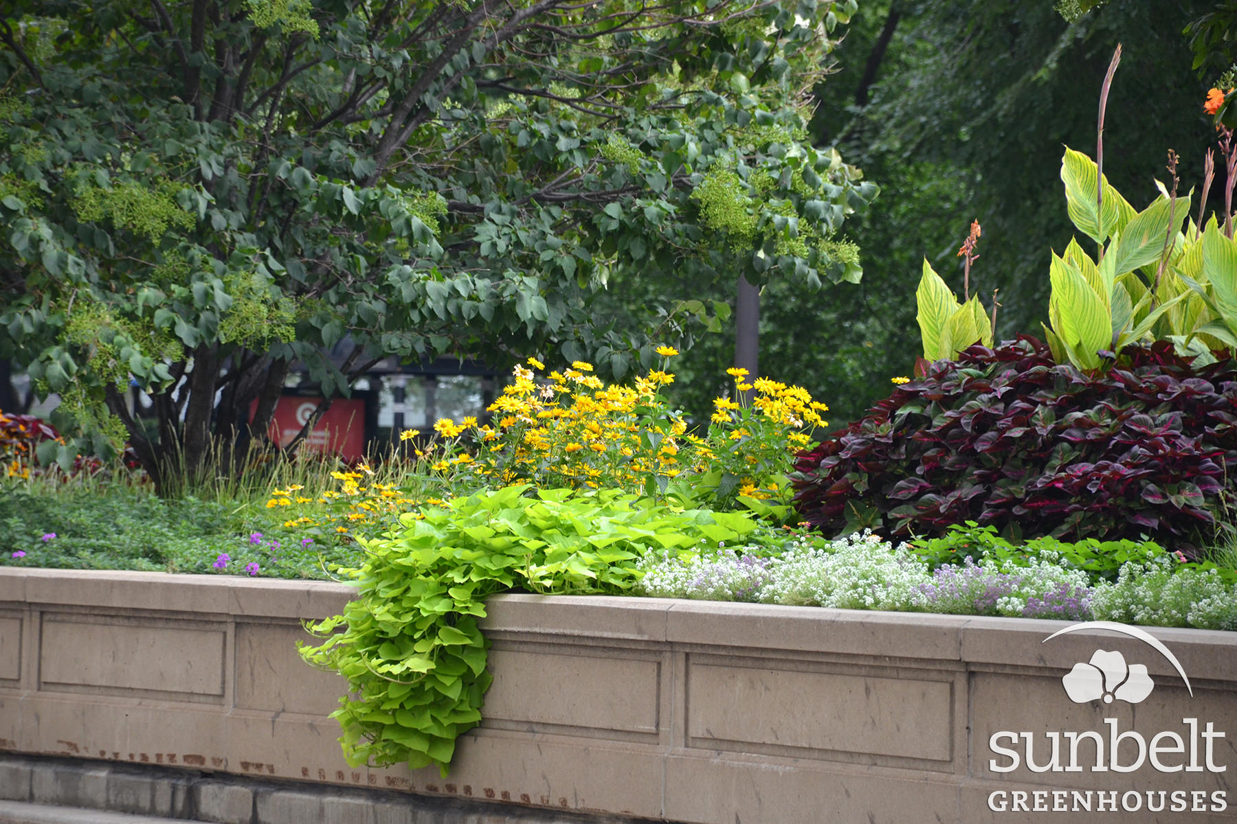 2015-08-19-chicago-landscaping-04.jpg