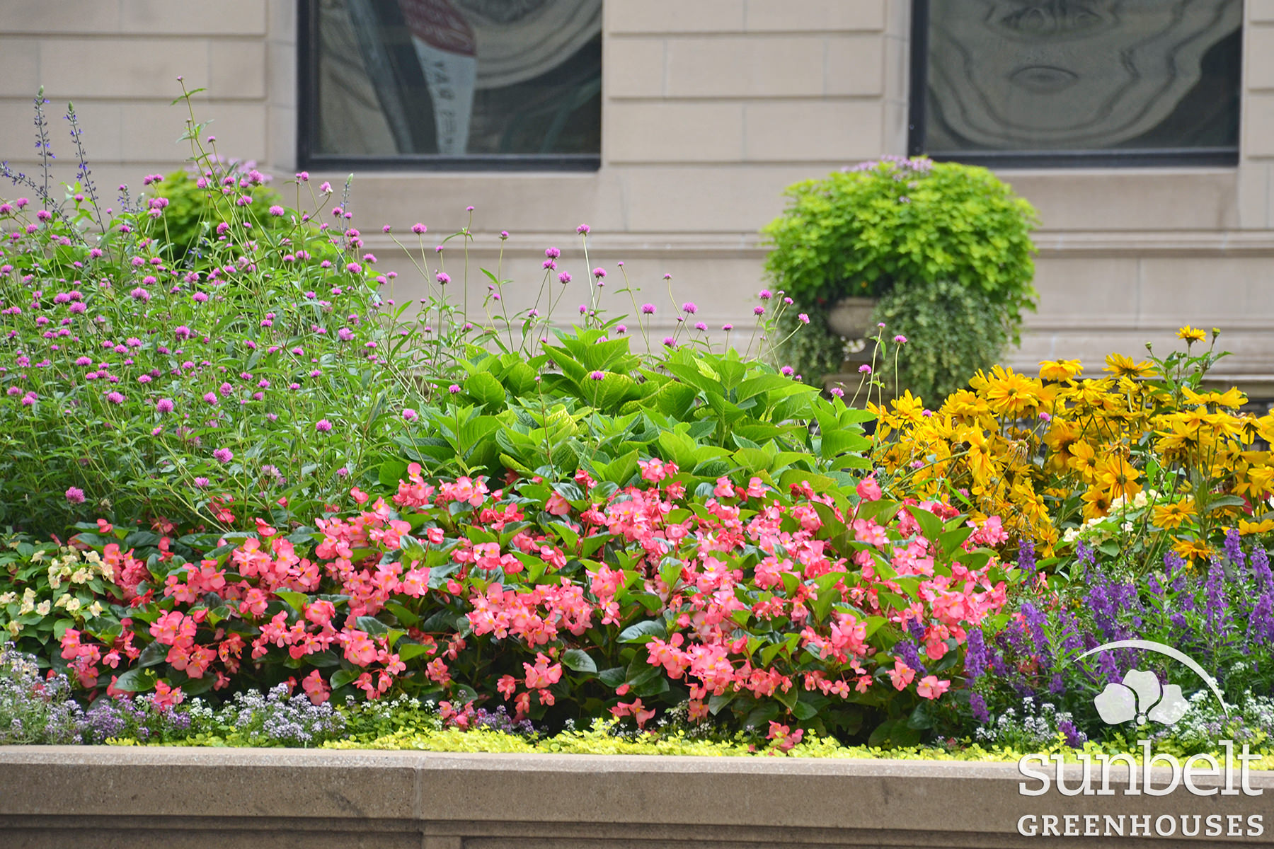 2015-08-19-chicago-landscaping-03.jpg