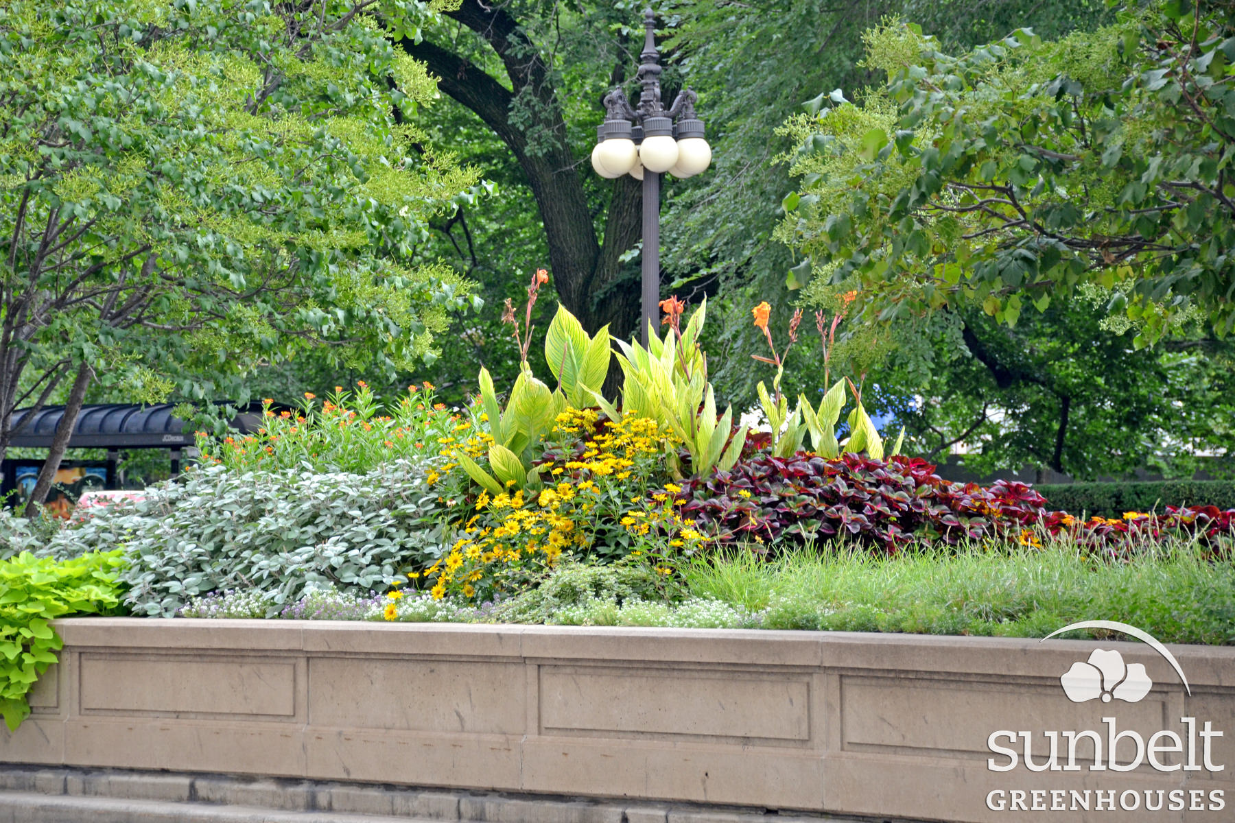 2015-08-19-chicago-landscaping-05.jpg