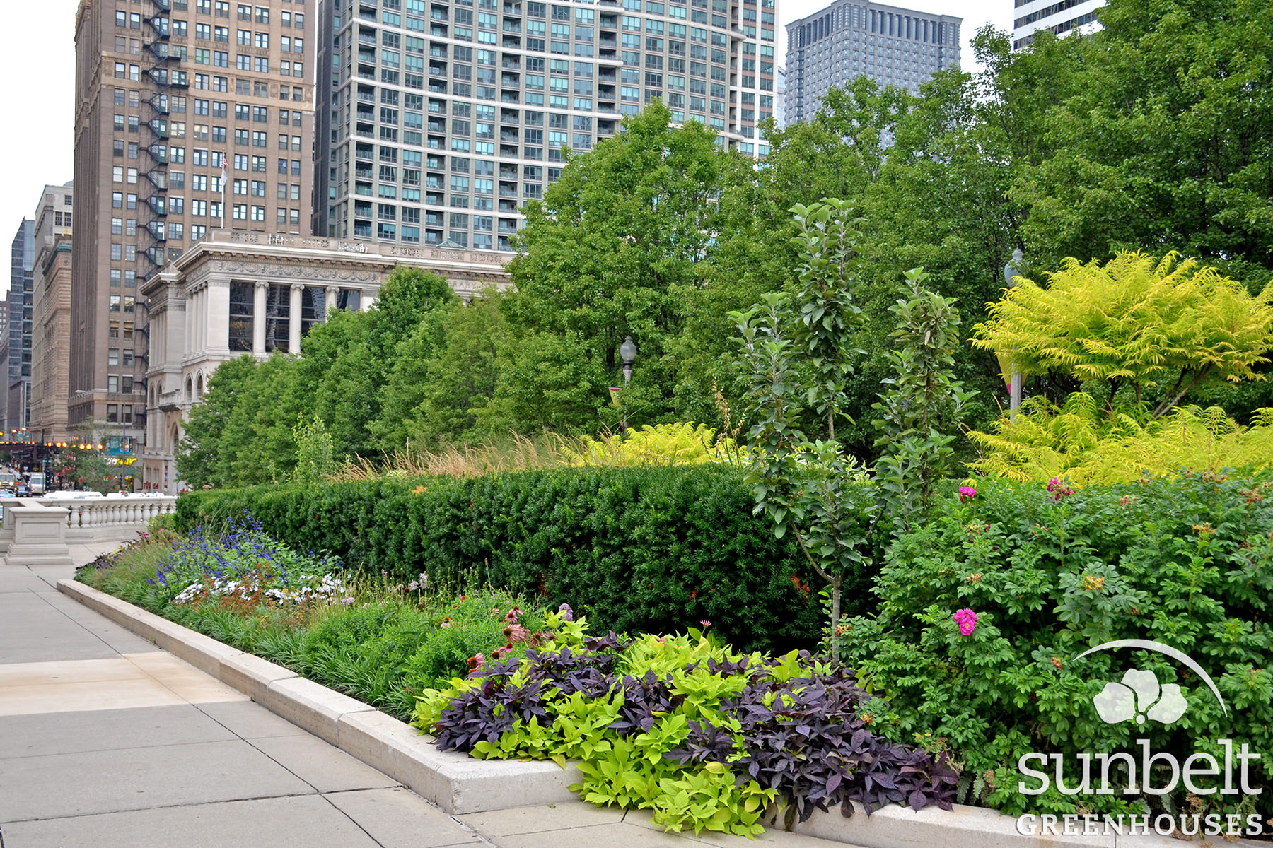 2015-08-19-chicago-landscaping-09.jpg