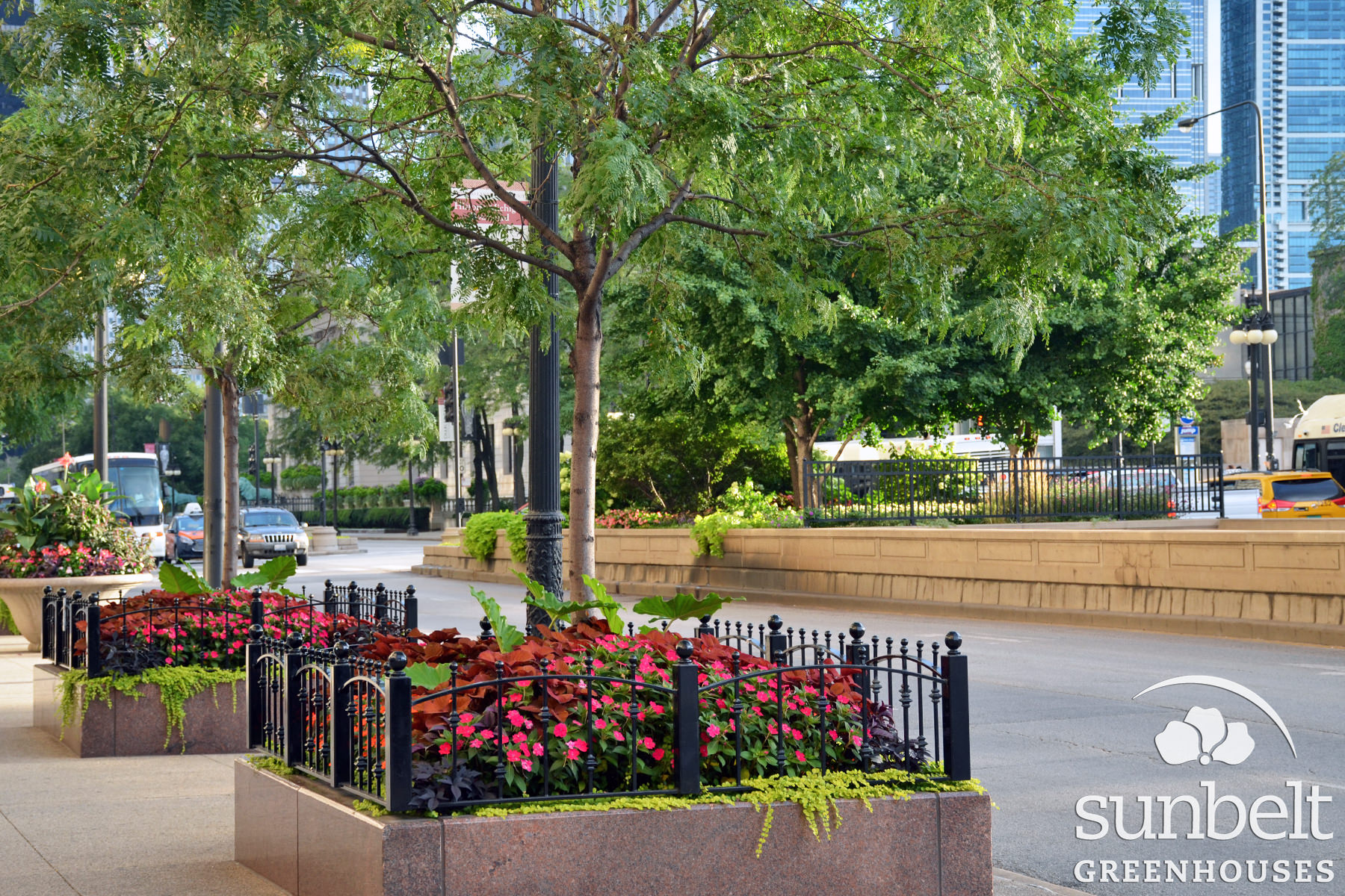 2015-08-19-chicago-landscaping-15.jpg