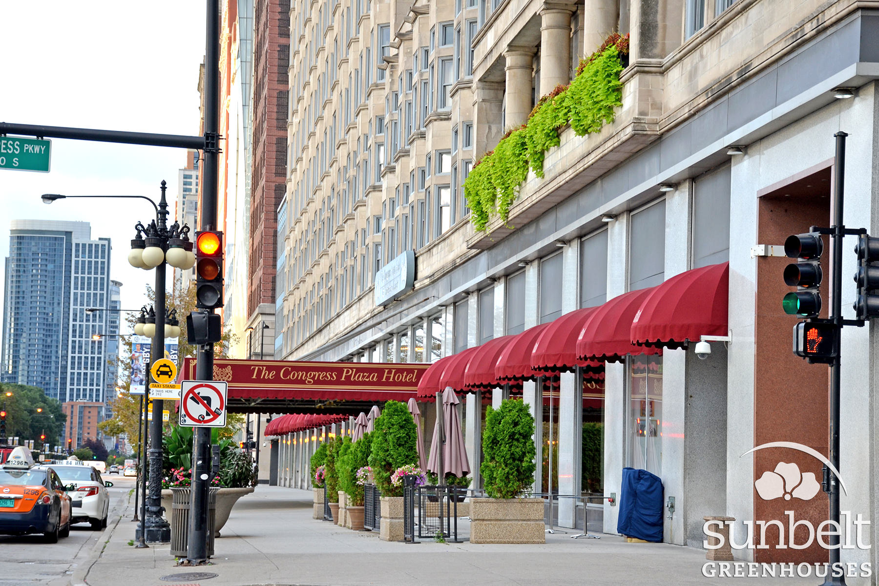 2015-08-19-chicago-landscaping-20.jpg