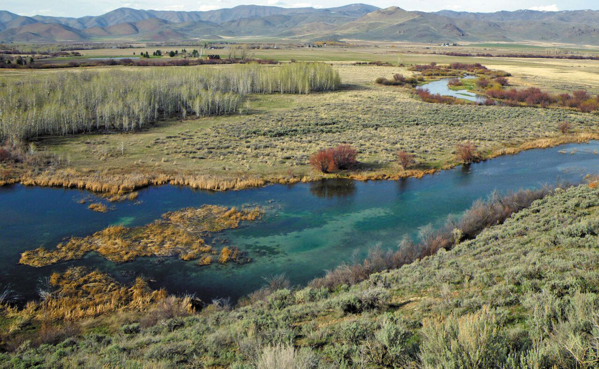 Silver Creek Watershed, Annual Reporting -  Research Conservation Category.  - EcoSystems Sciences