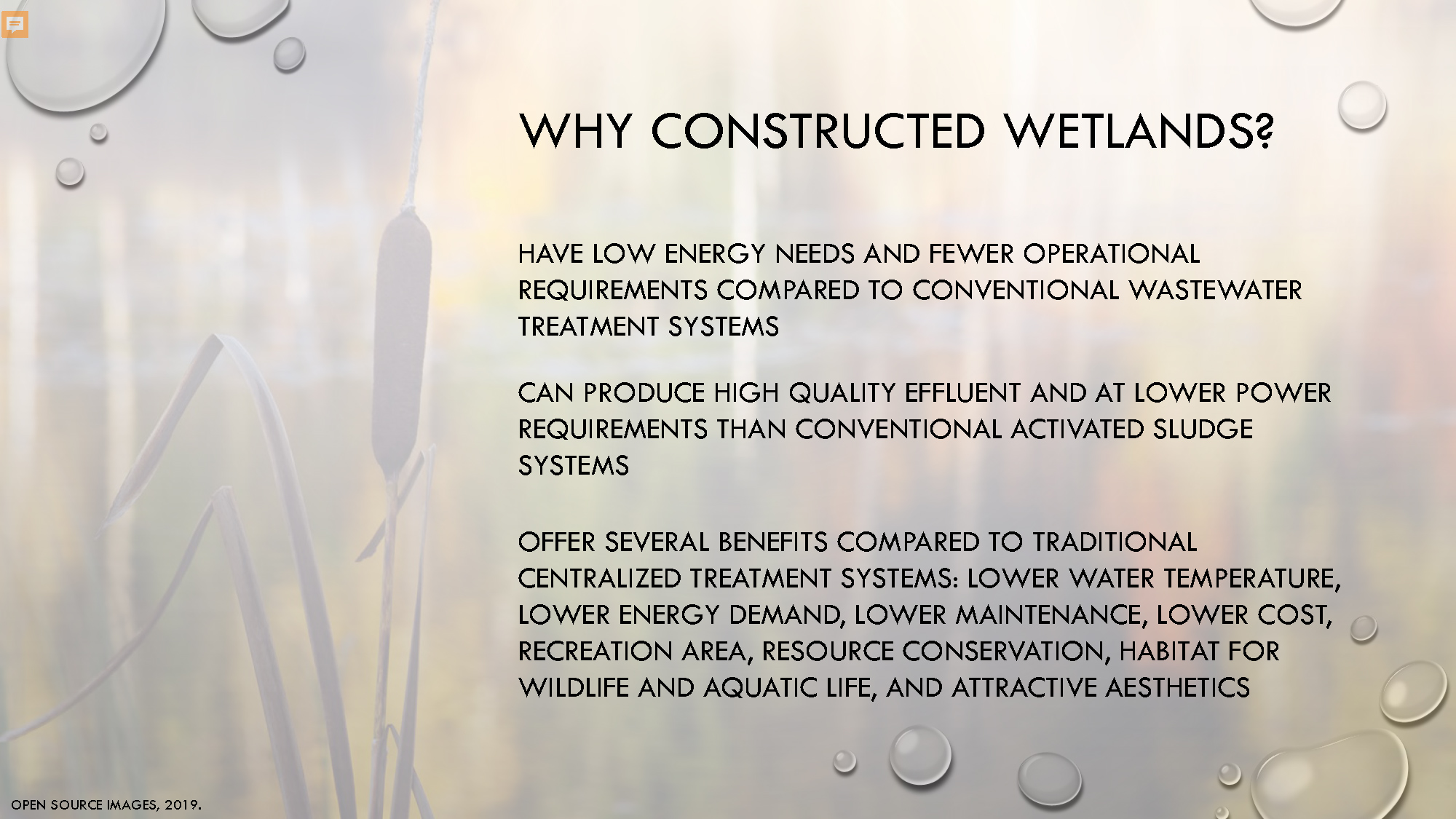 Constructed Wetlands_Page_09.jpg