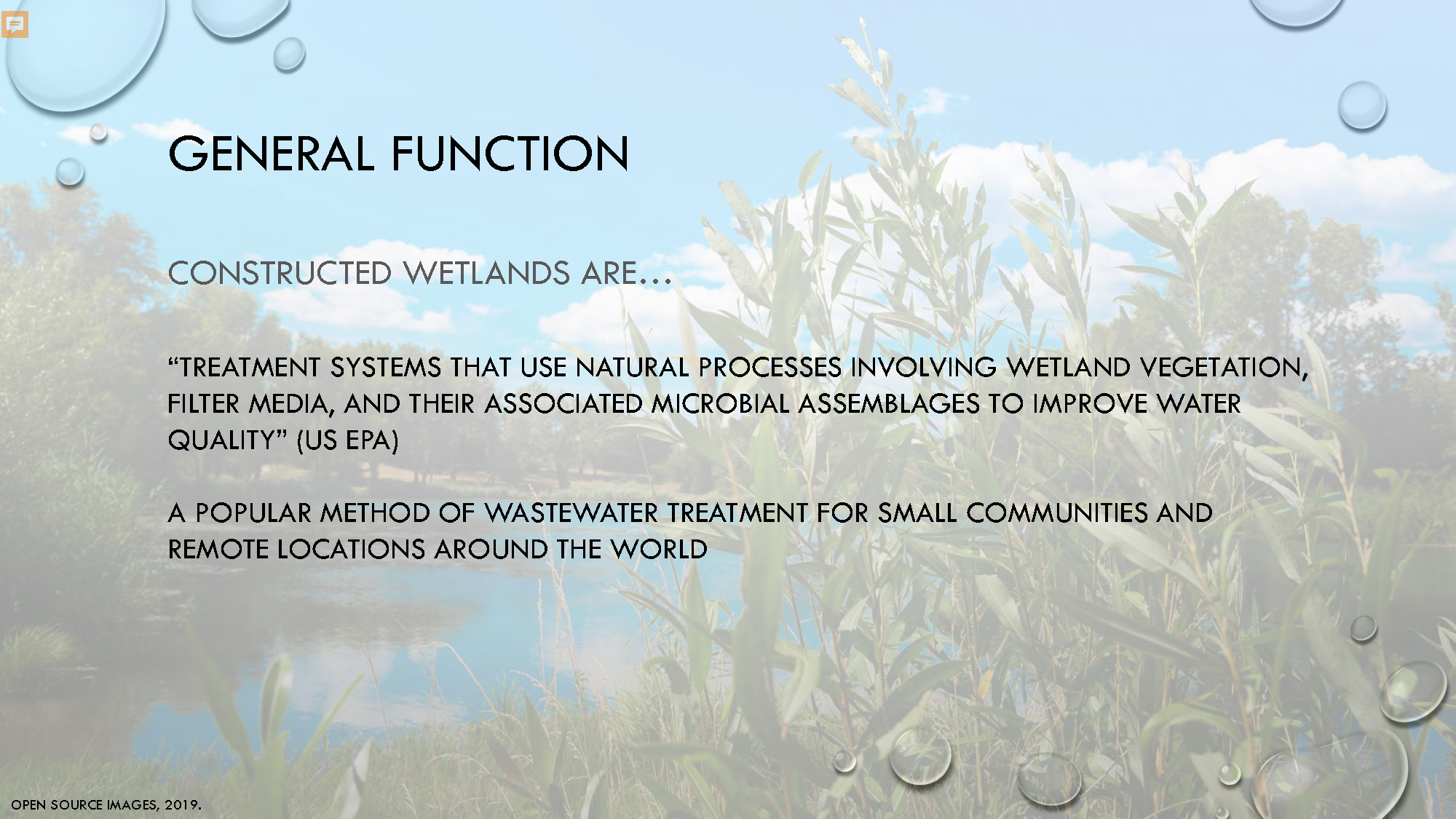 Constructed Wetlands_Page_11.jpg