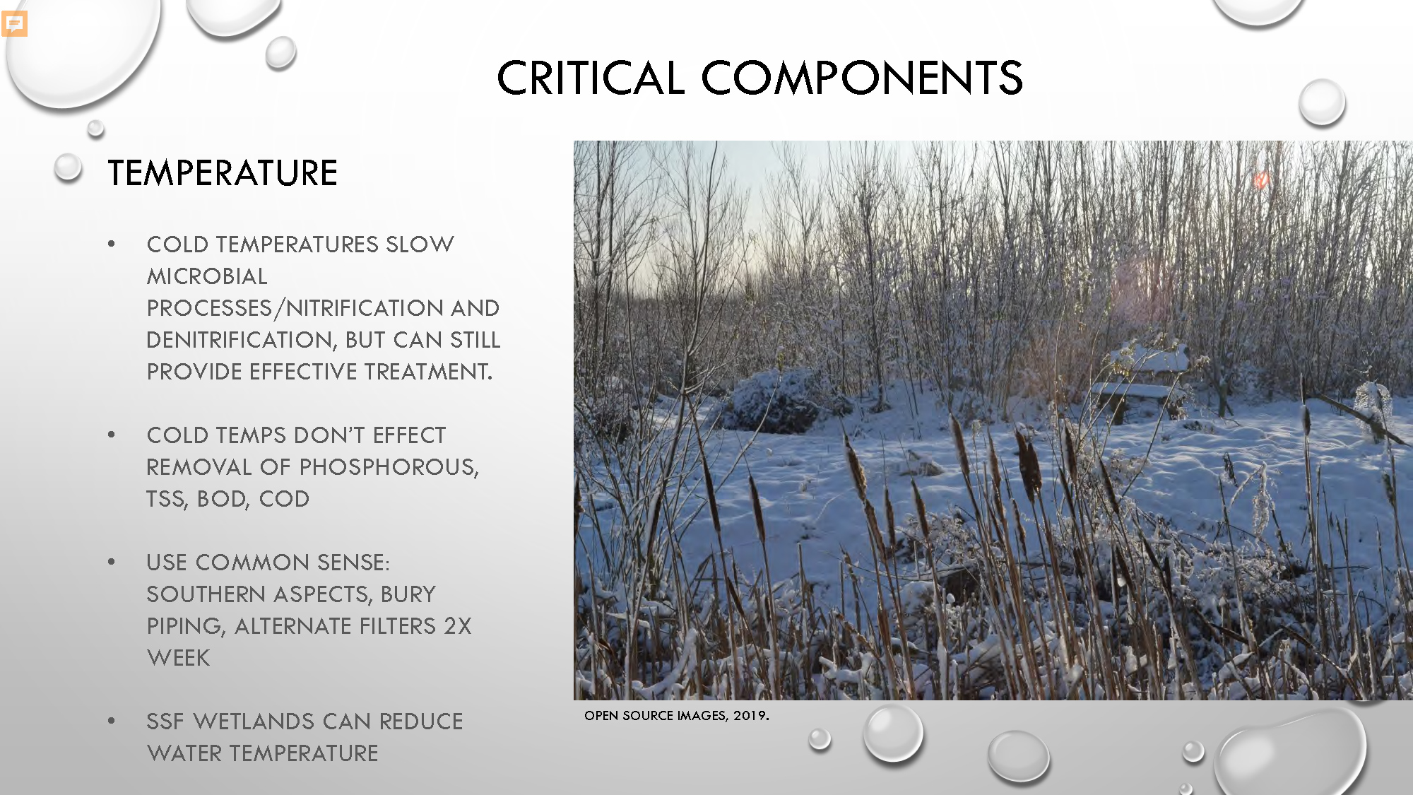 Constructed Wetlands_Page_20.jpg