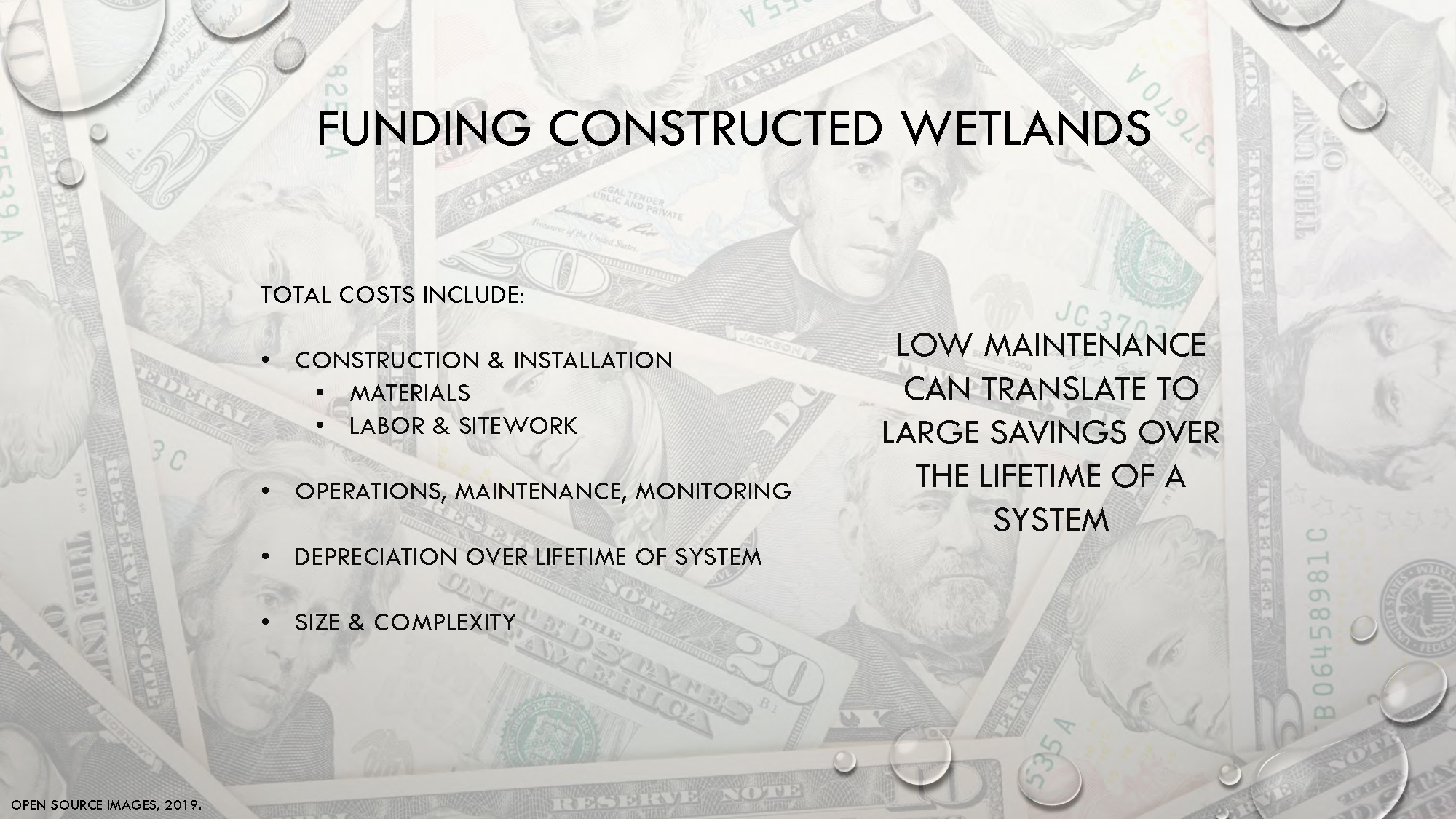 Constructed Wetlands_Page_34.jpg