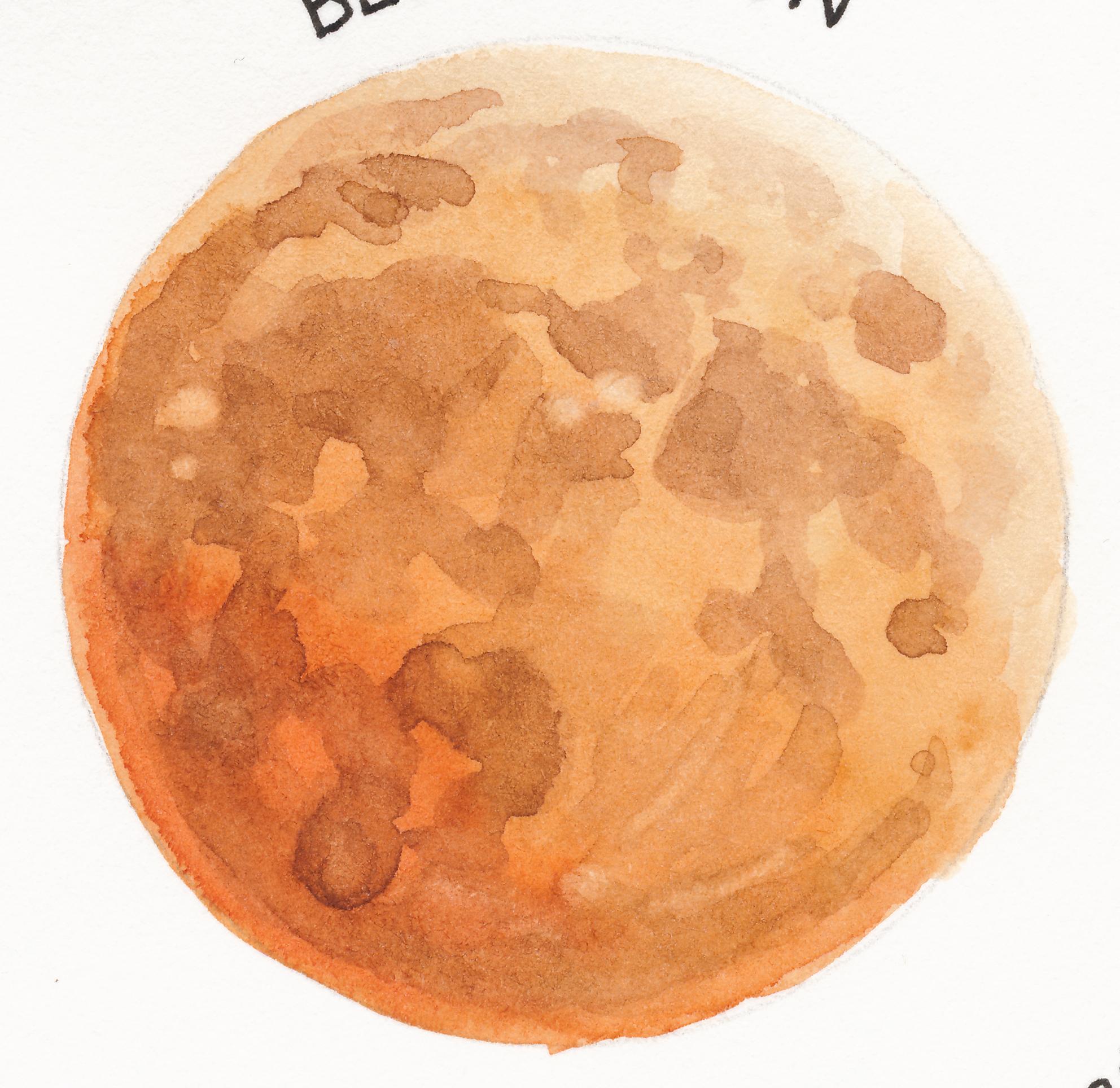 saylorwolf-blood_moon.png