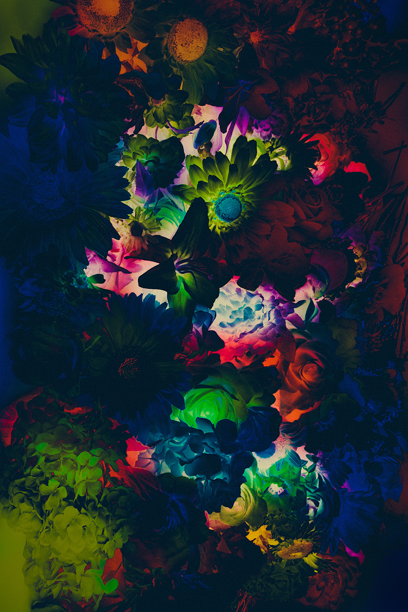 Flowers in the Dark