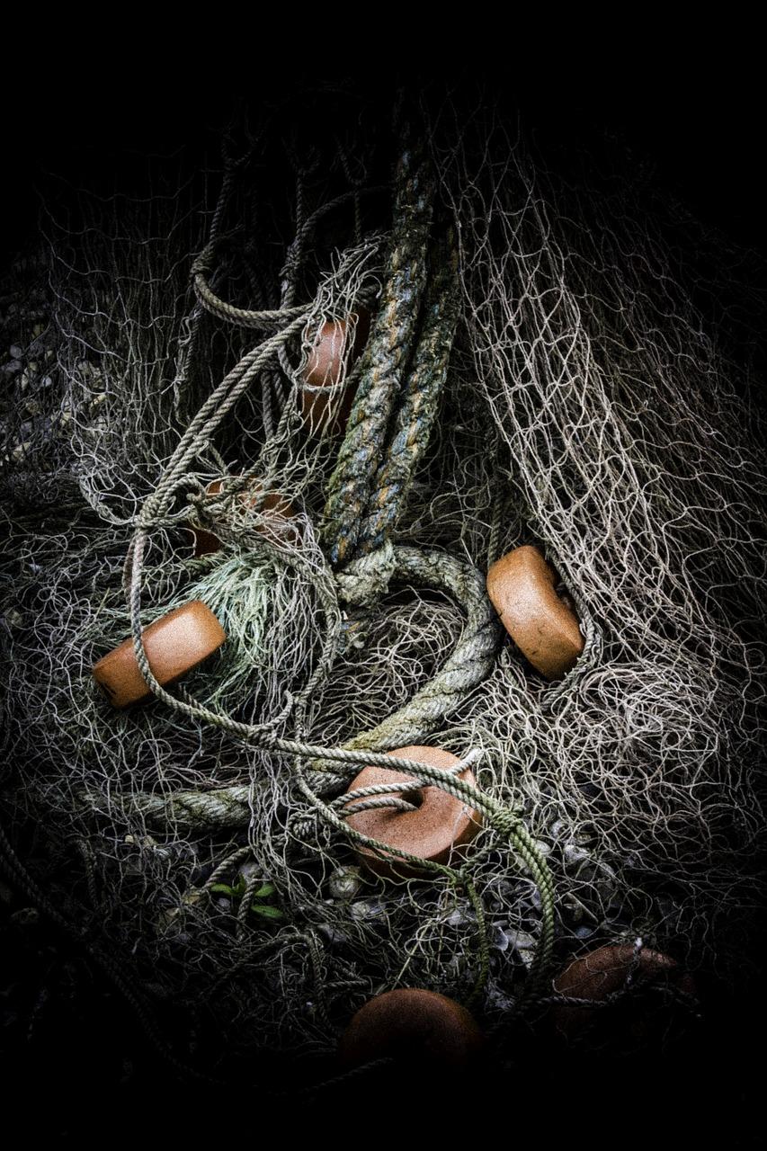 fishing-2541557_1280.jpg