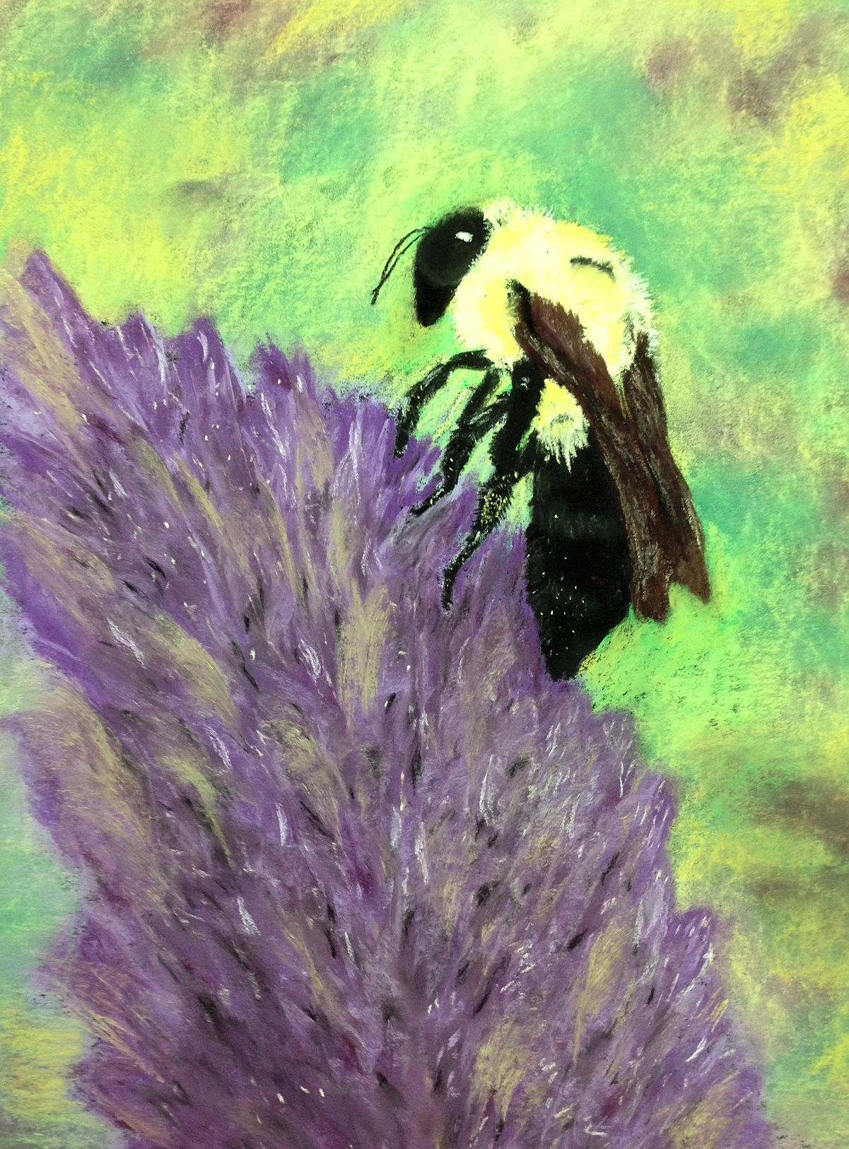 Bee study with purple flower