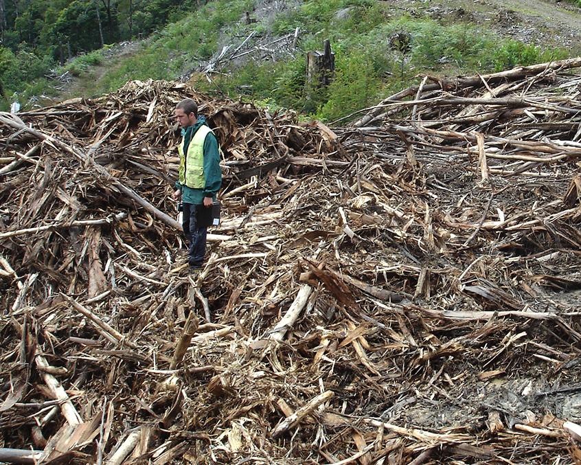 Pinetech-Pacific-log-waste.jpg