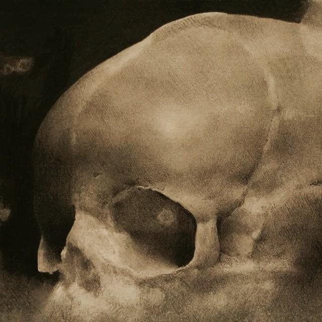 skull_study_gr.jpg