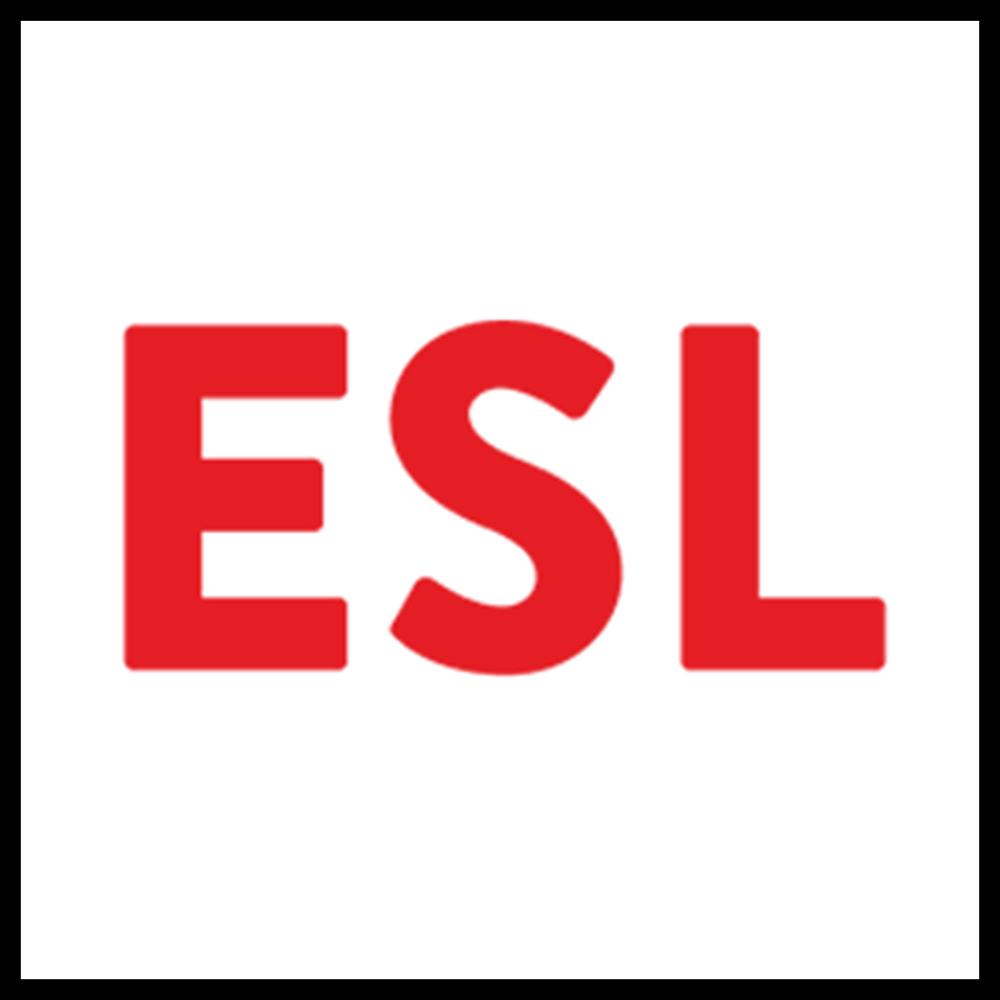 Engineering Surveys Limited