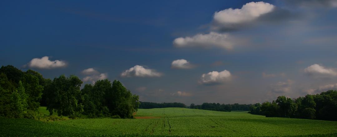 indiana.landscape.jpg