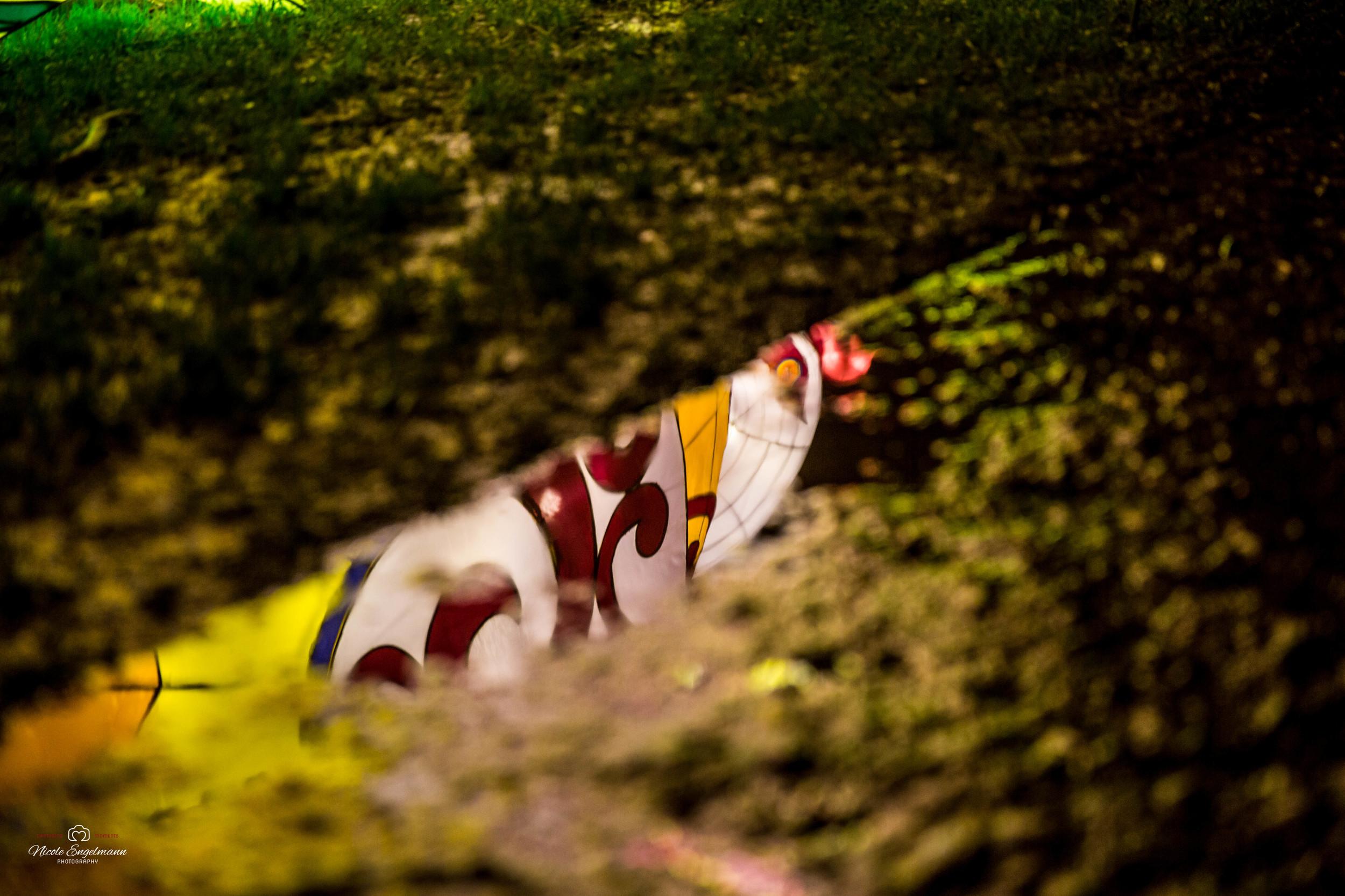 lantern-festival-8.jpg