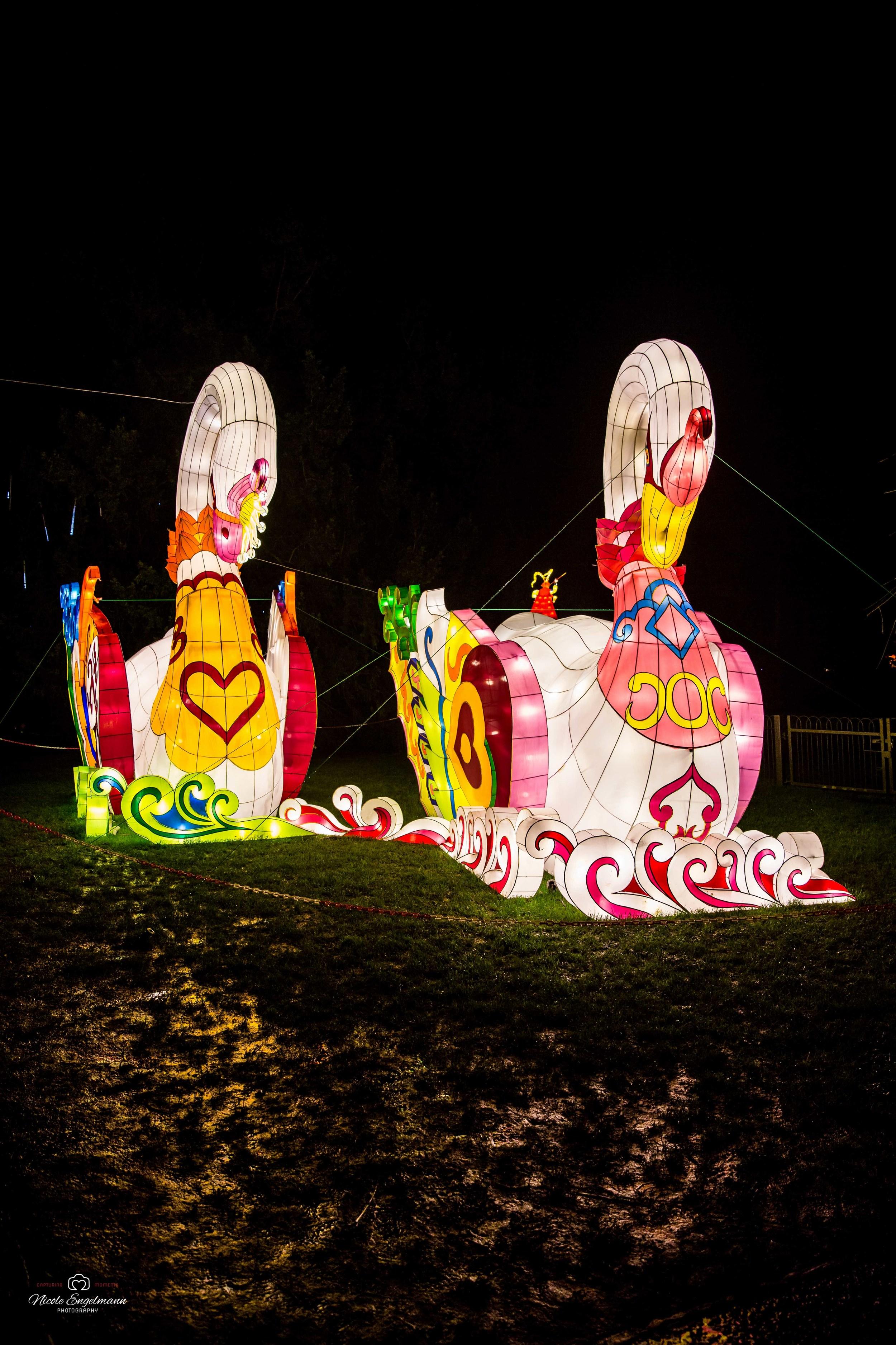 lantern-festival-9.jpg