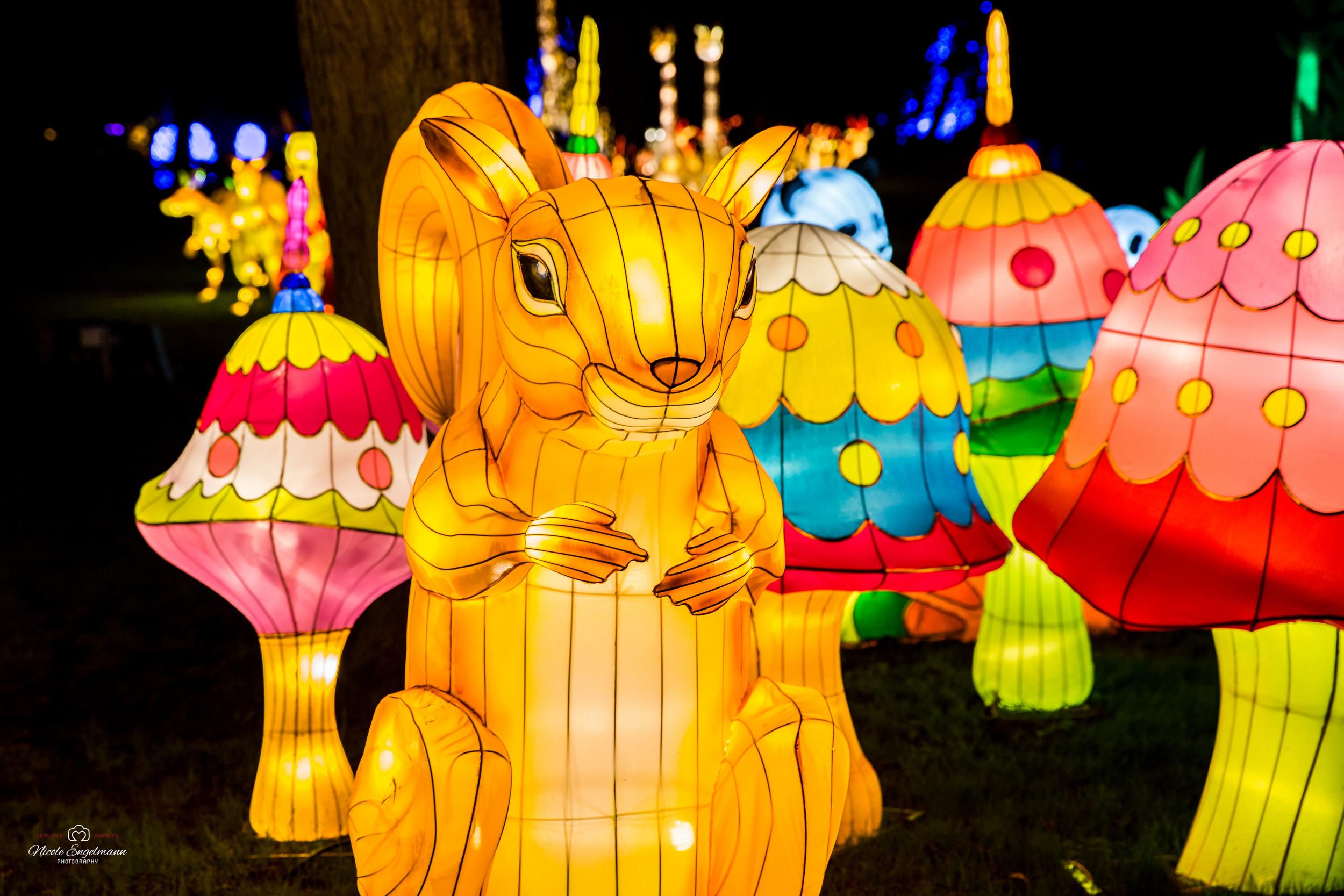 lantern-festival-11.jpg