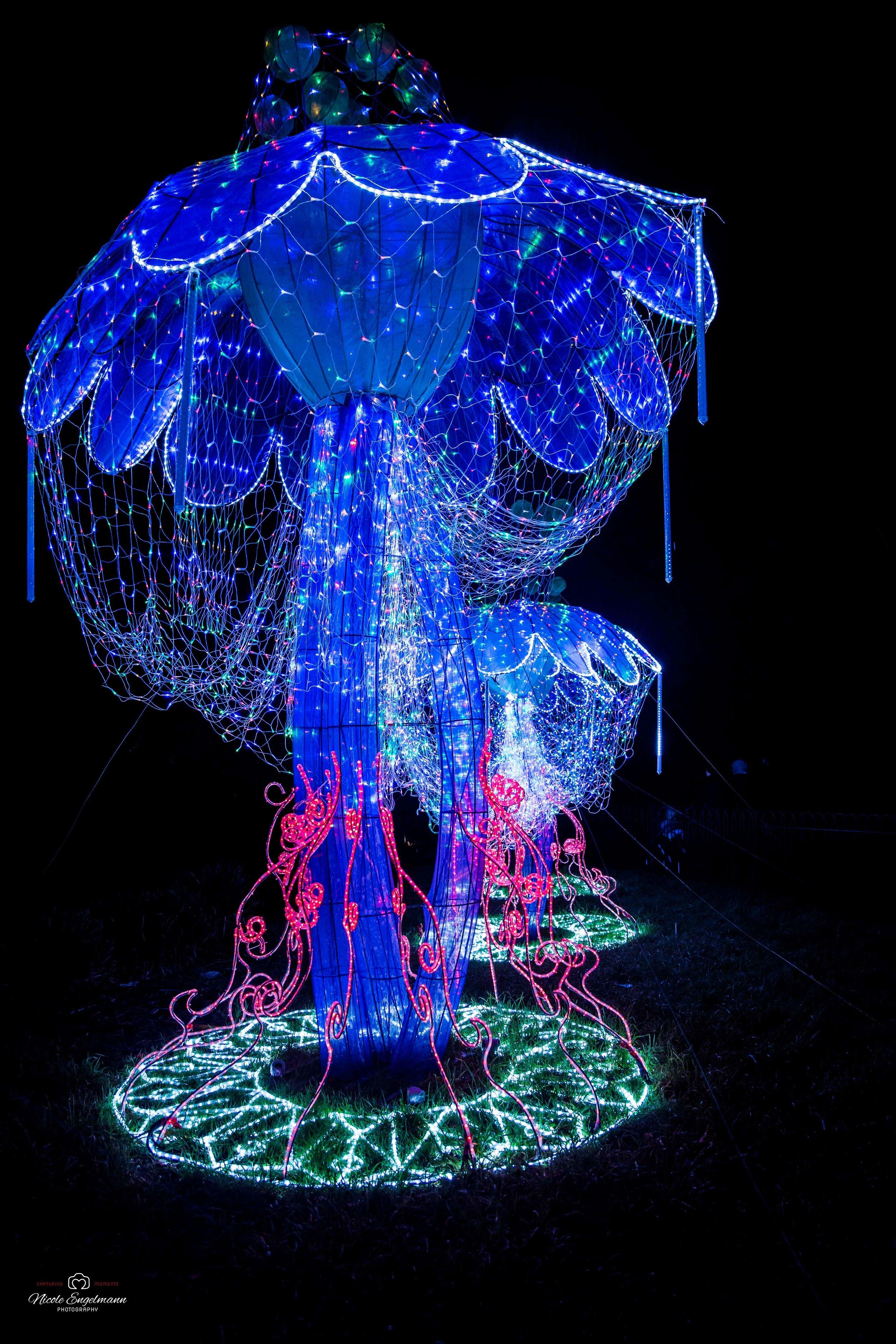 lantern-festival-38.jpg