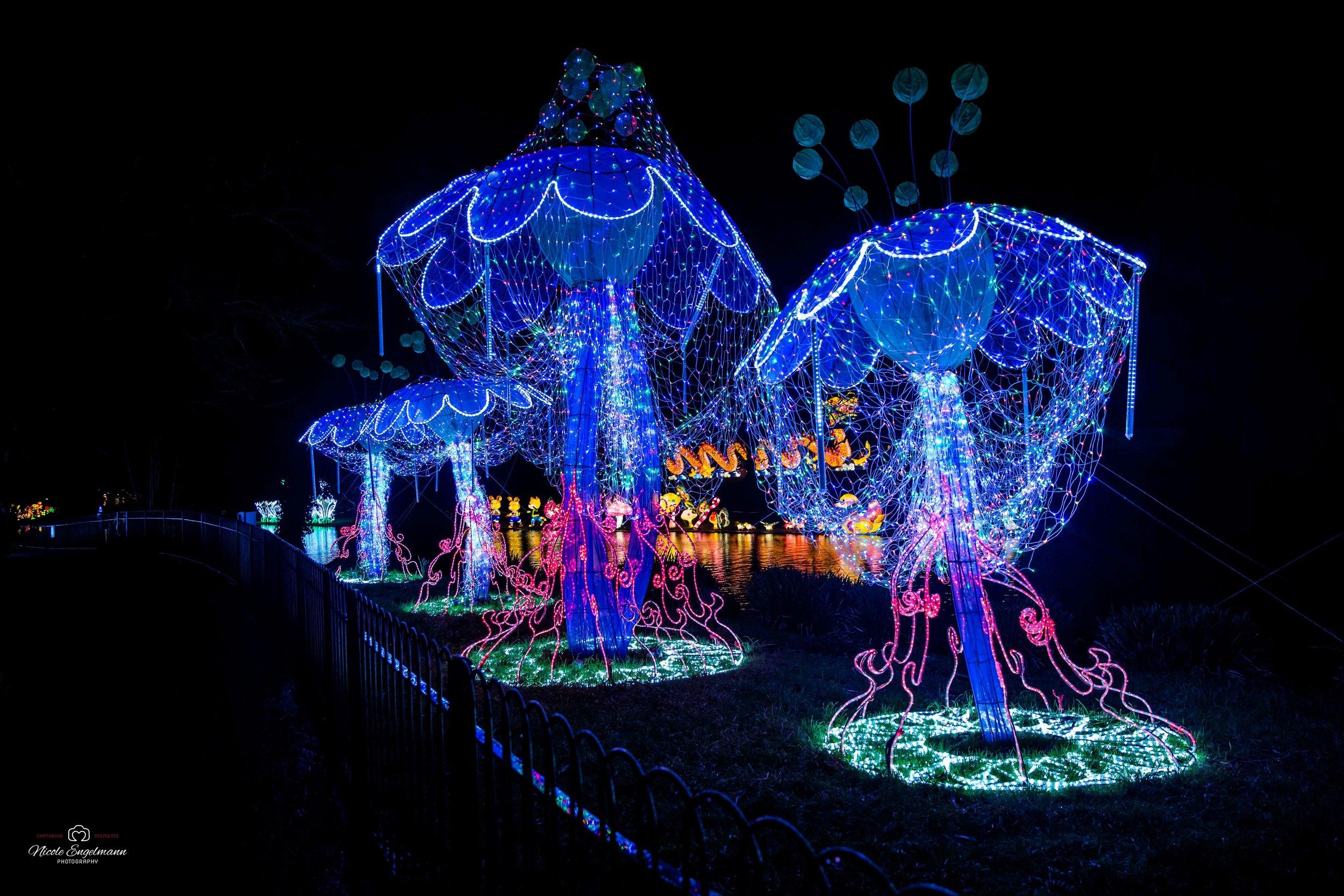 lantern-festival-39.jpg