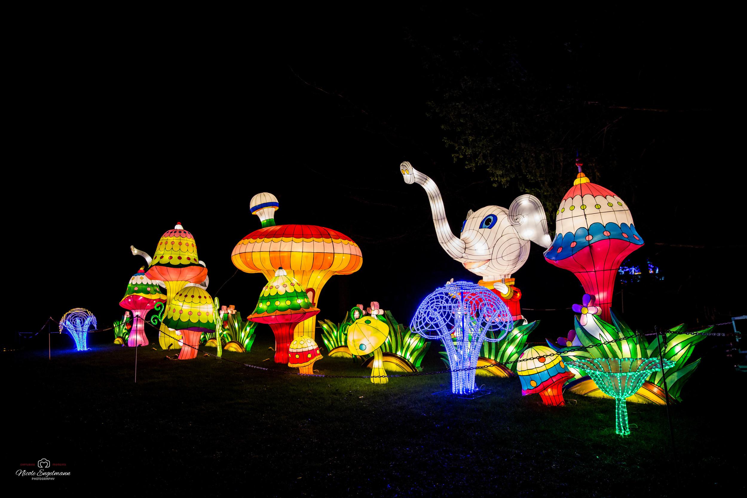 lantern-festival-50.jpg