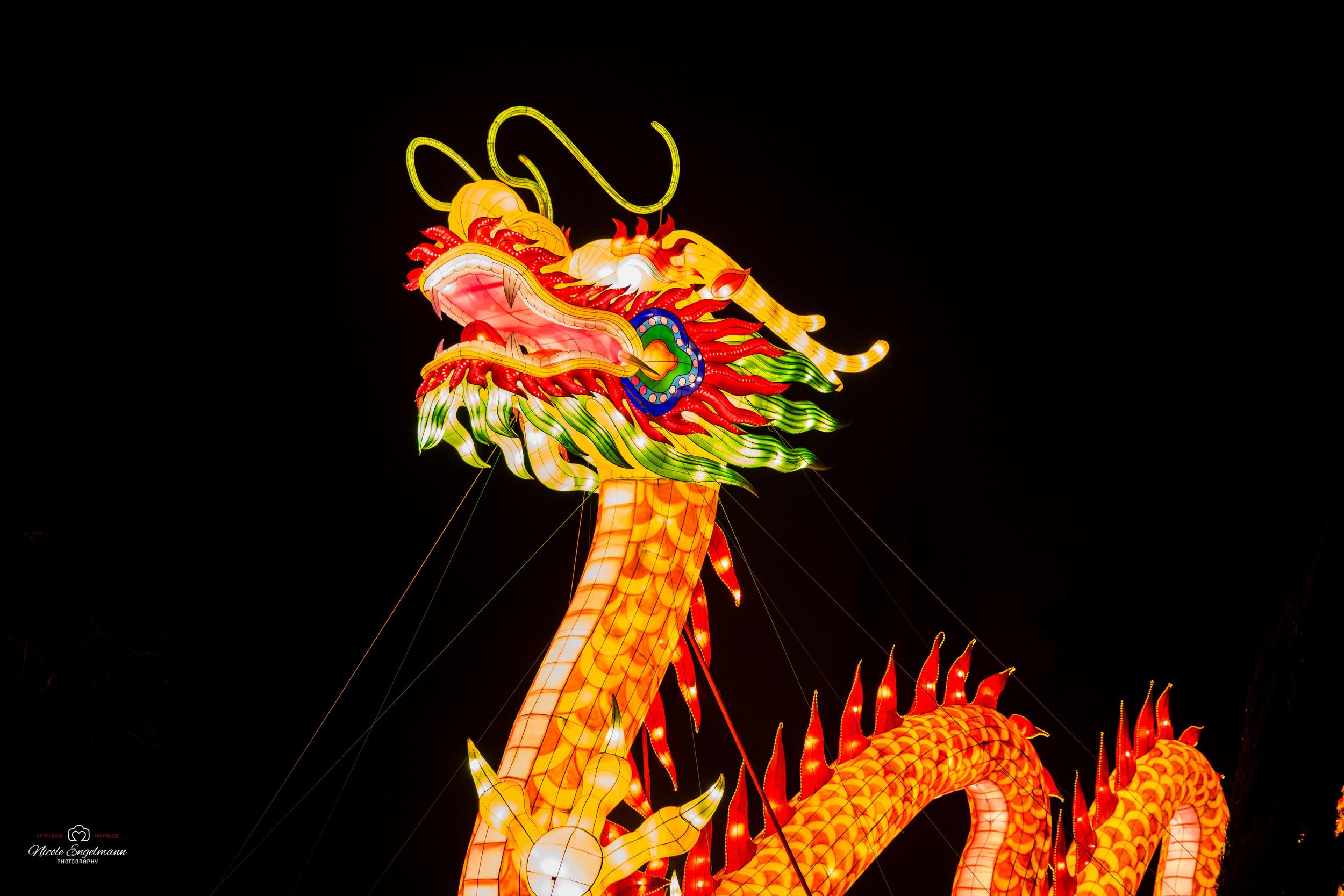 lantern-festival-57.jpg
