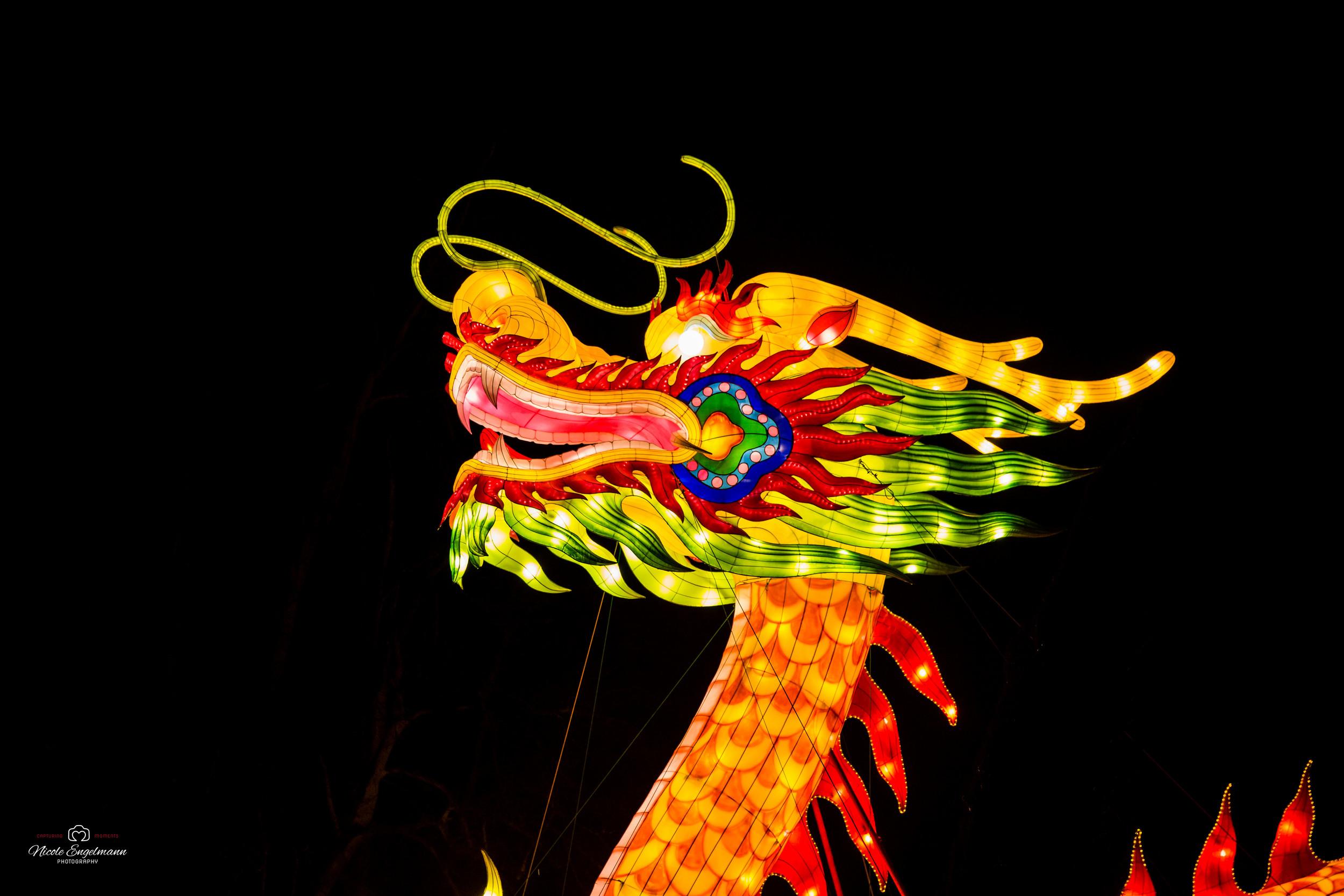 lantern-festival-59.jpg