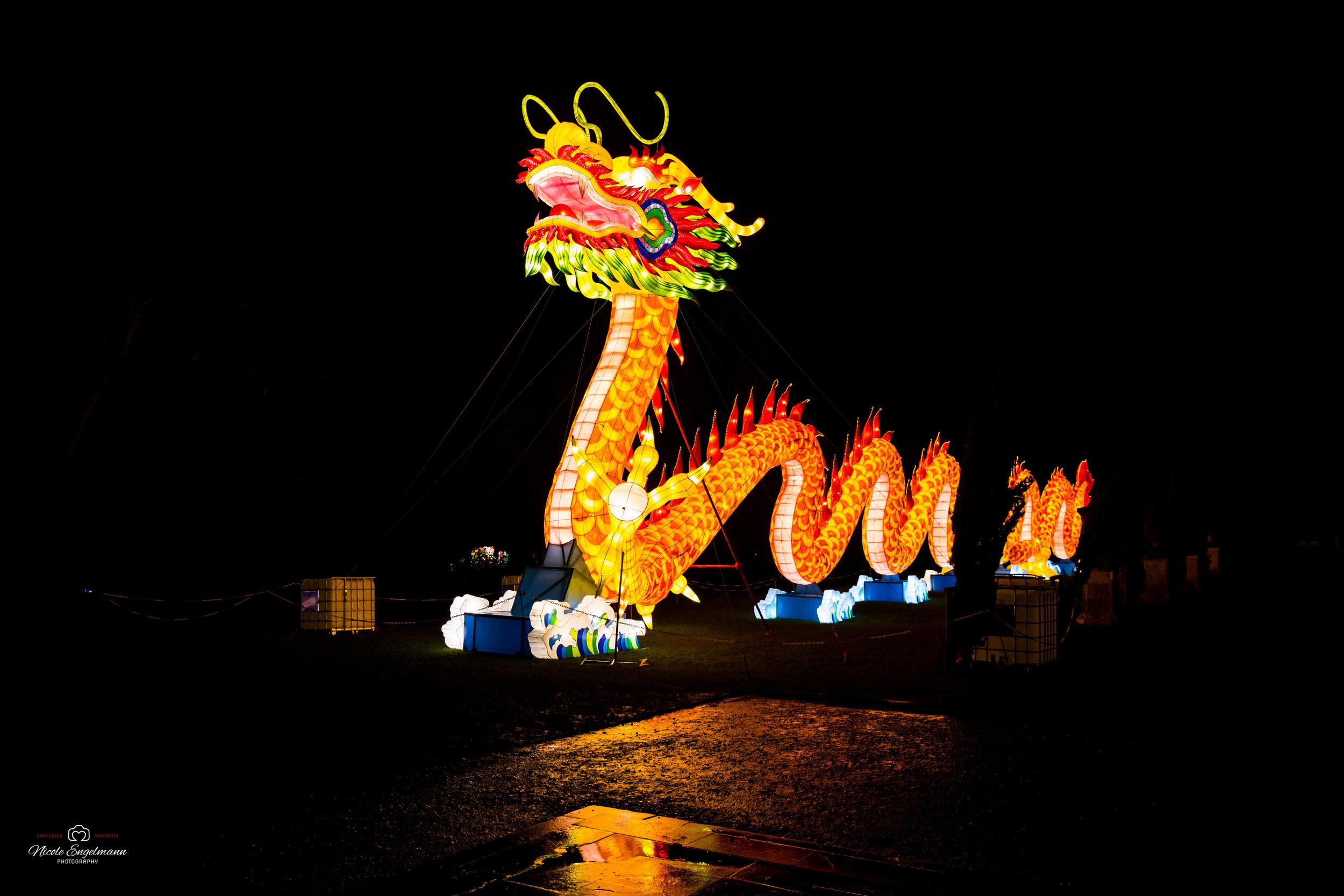 lantern-festival-60.jpg