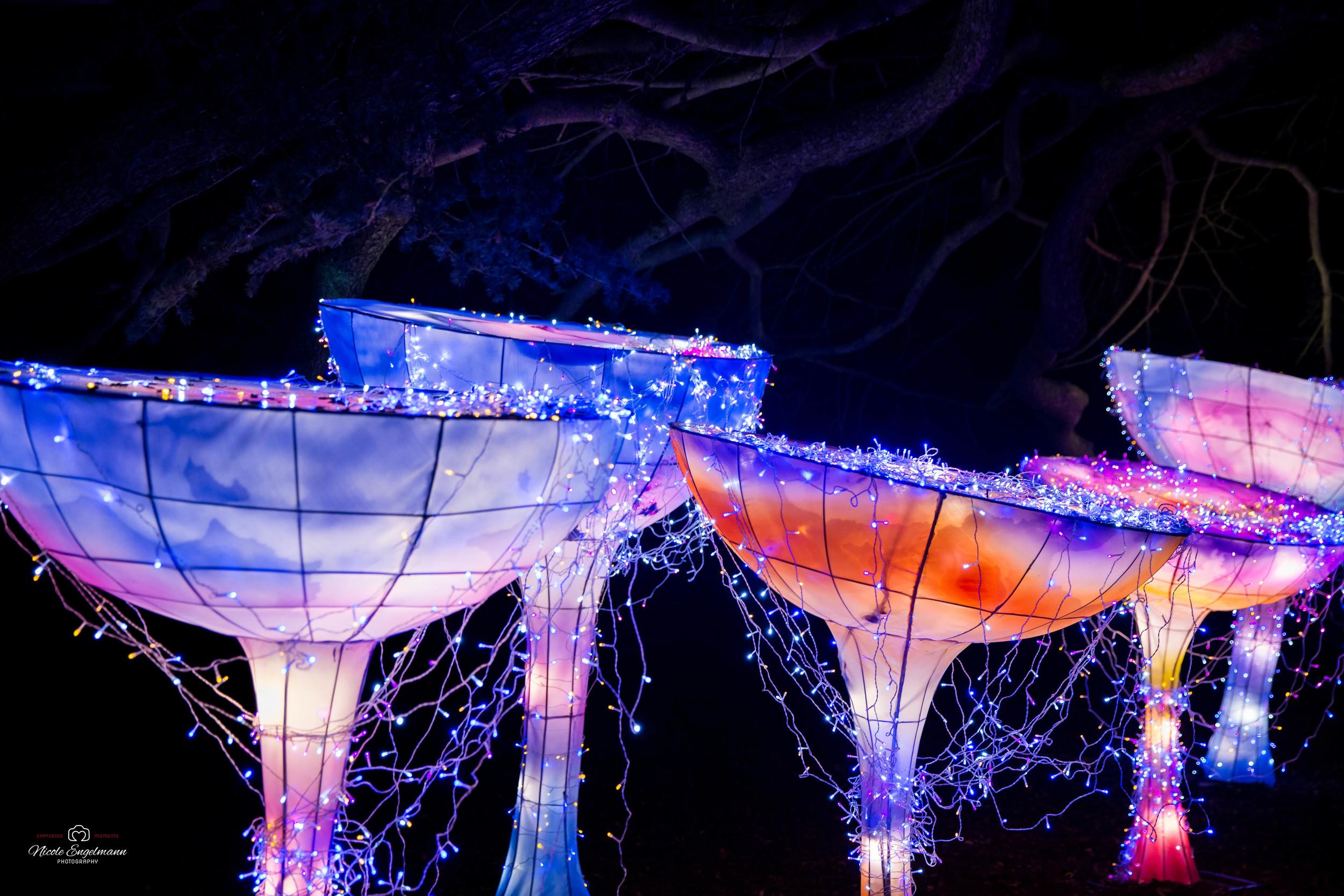lantern-festival-68.jpg