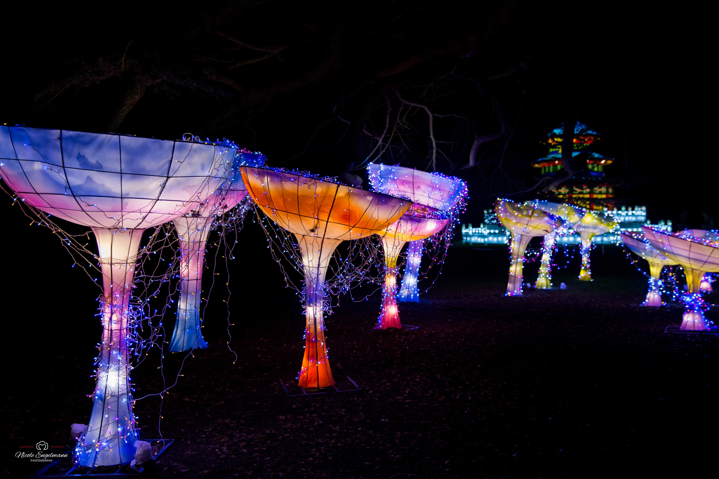 lantern-festival-70.jpg