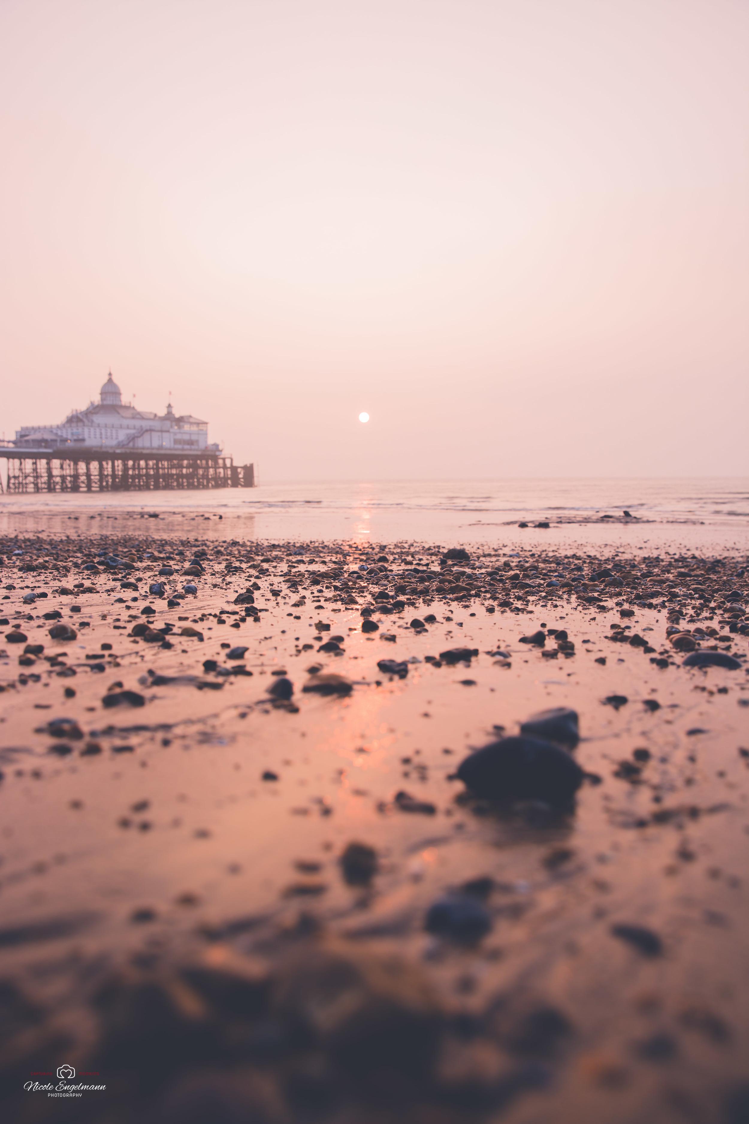 eastbourne-10.jpg