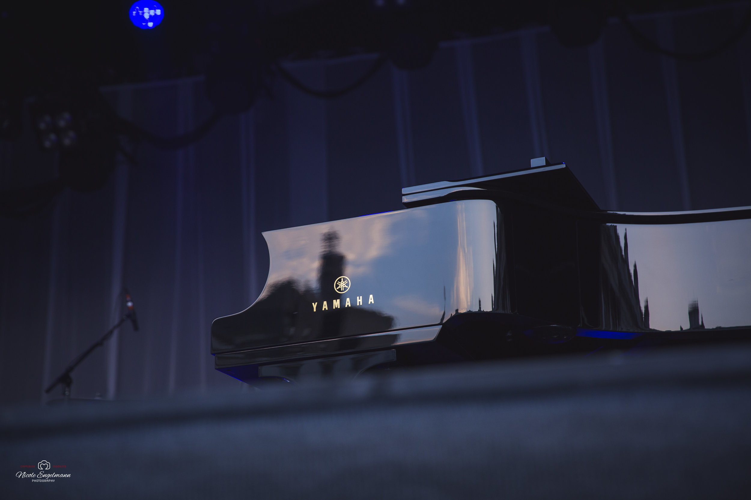 Norah Jones WM-2.jpg