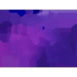 purple splotch.png