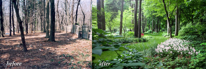 shade-garden_property-landscape-renovation_long-island_ny_silverleaf-landscape-design_before_after.jpg