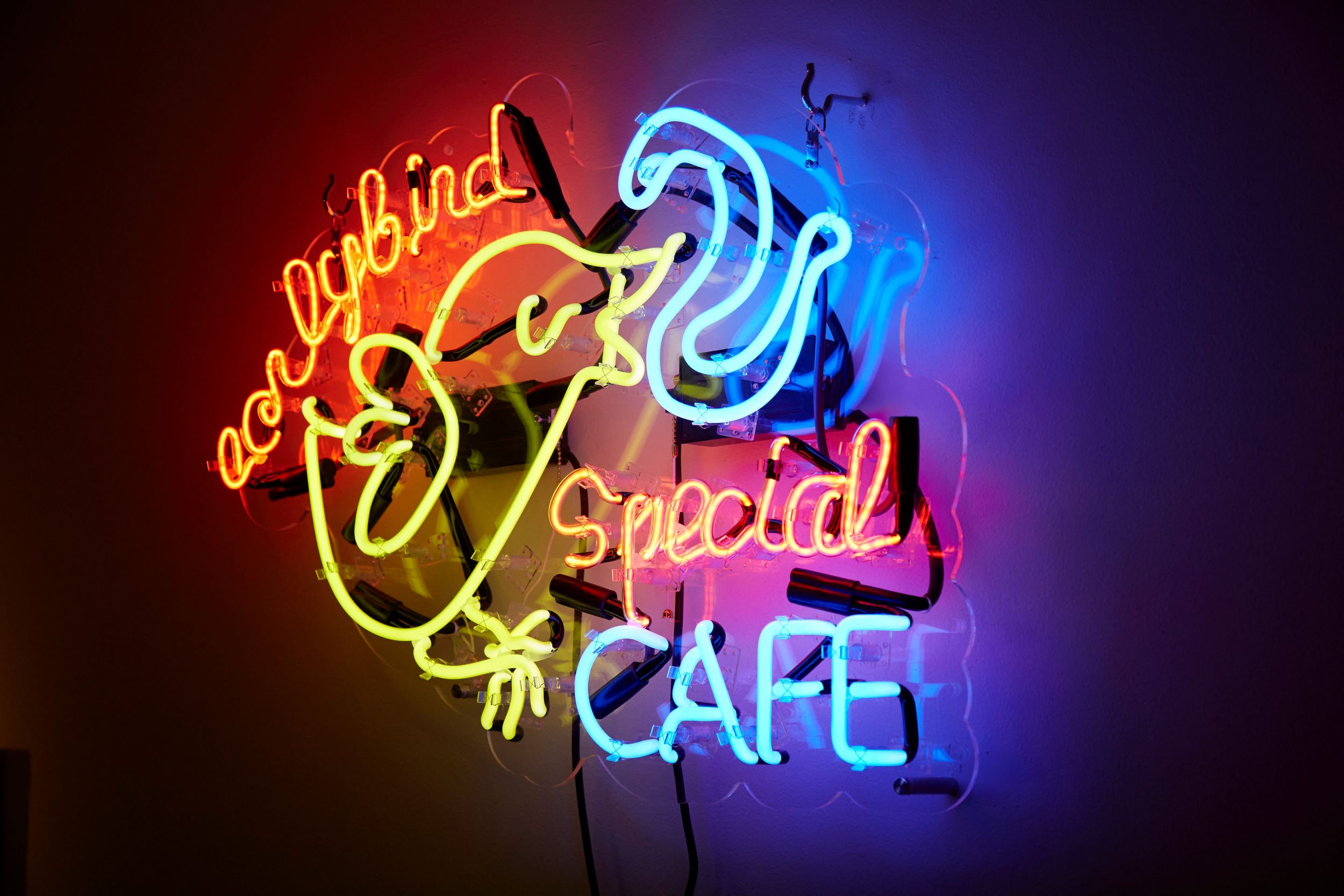 Early Bird Special Cafe