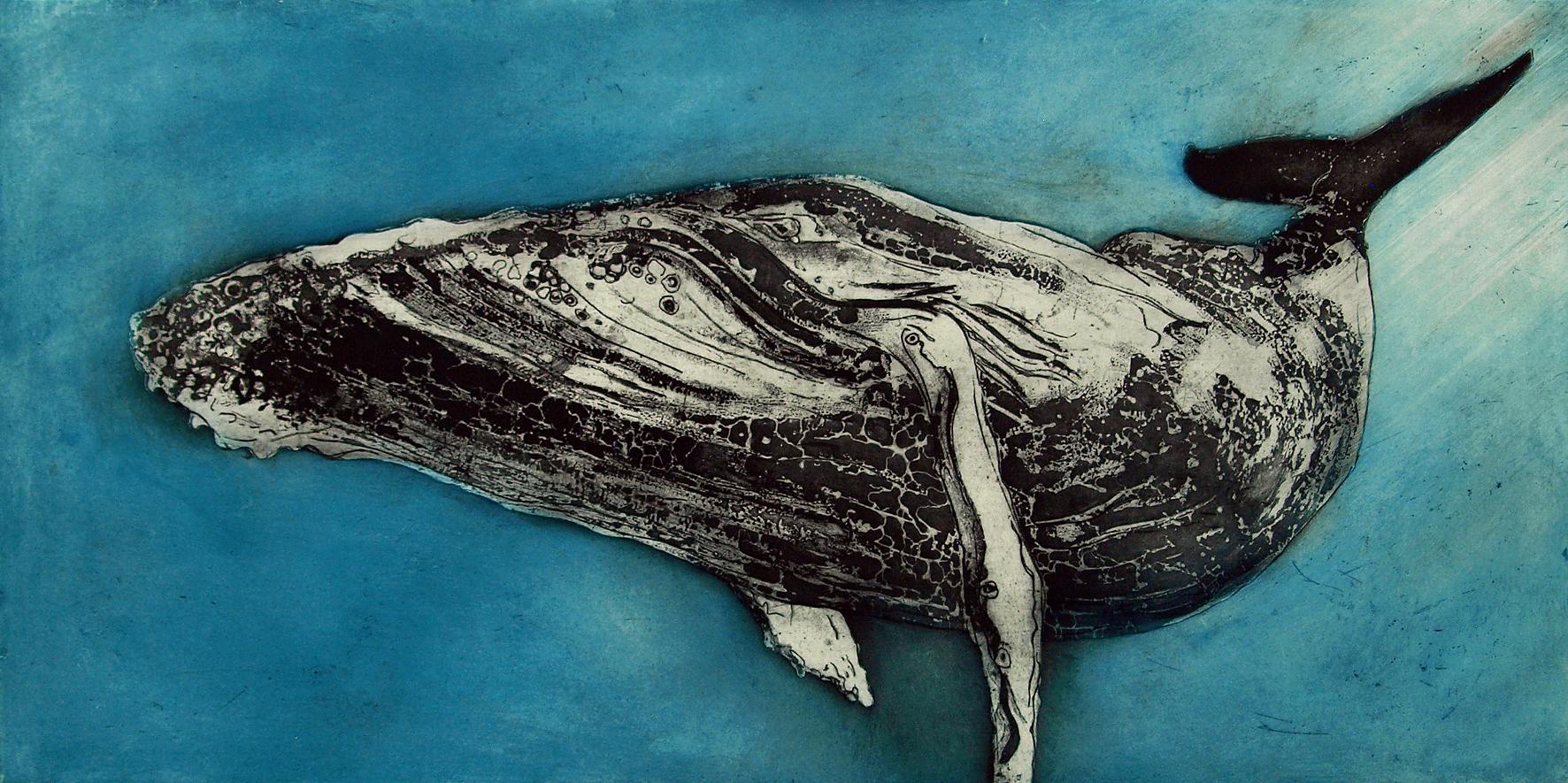 Humpback Whale III, etching, 99 x 50 cm.