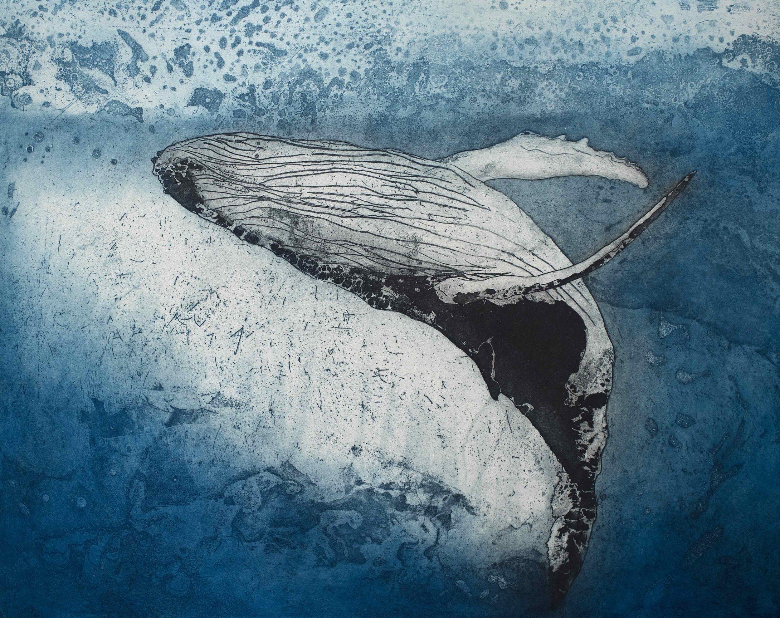 Leviathan IV